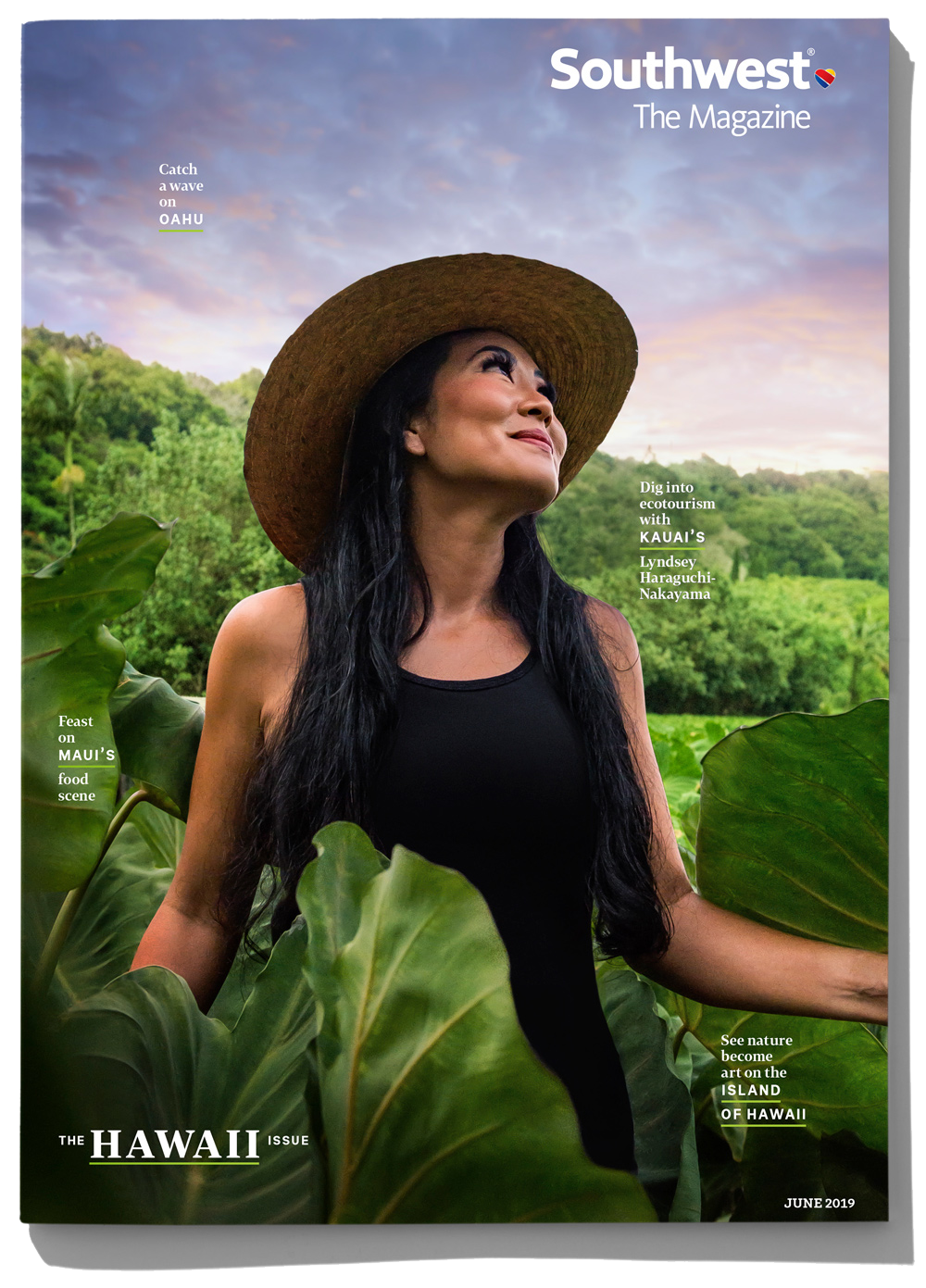 HAWAII_Cover2-crop-web-trans.png