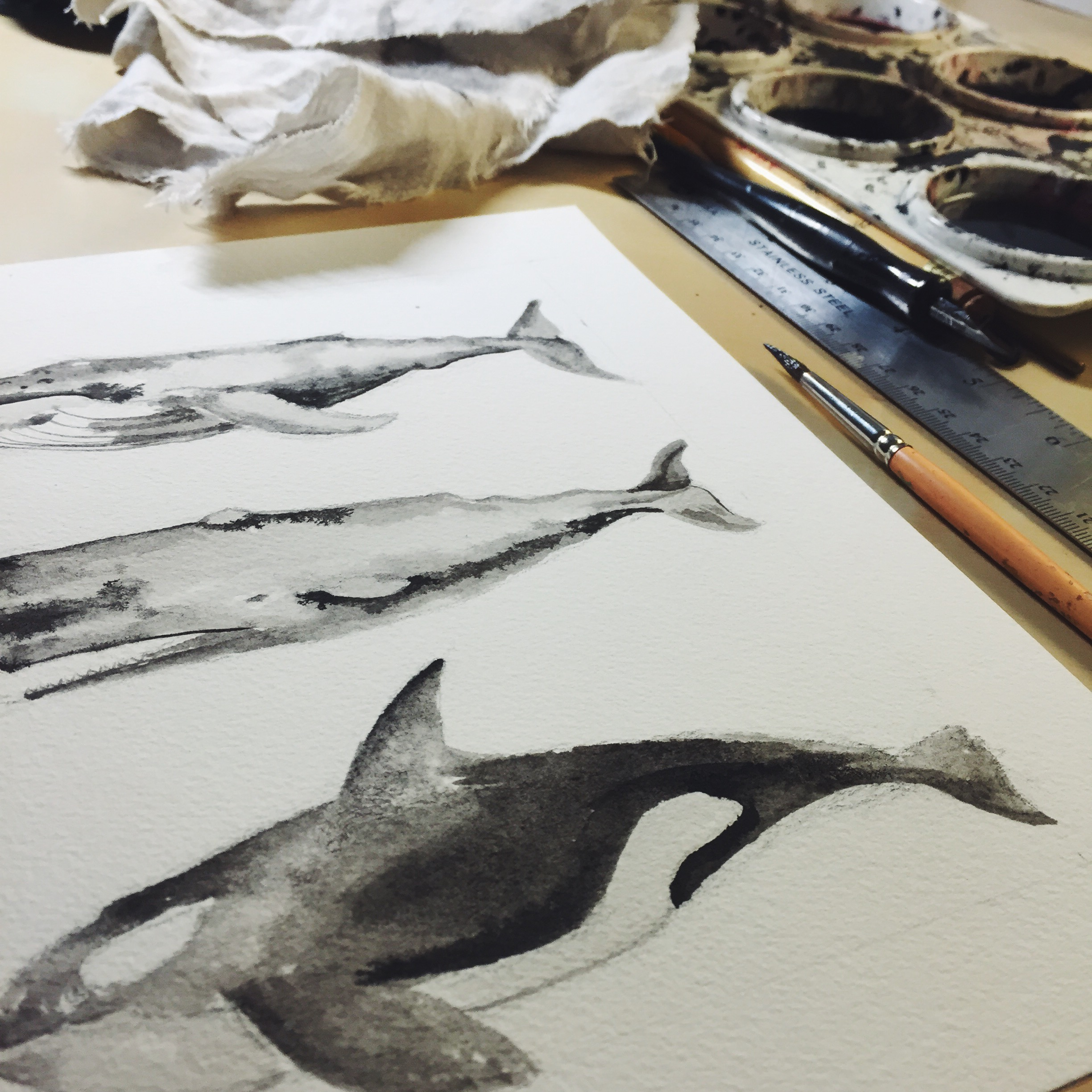 whales-orca-ink-watercolor-painting.jpg