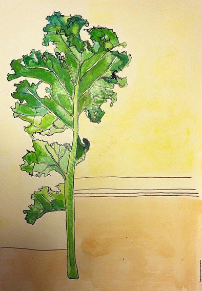 64: Kale - Sold