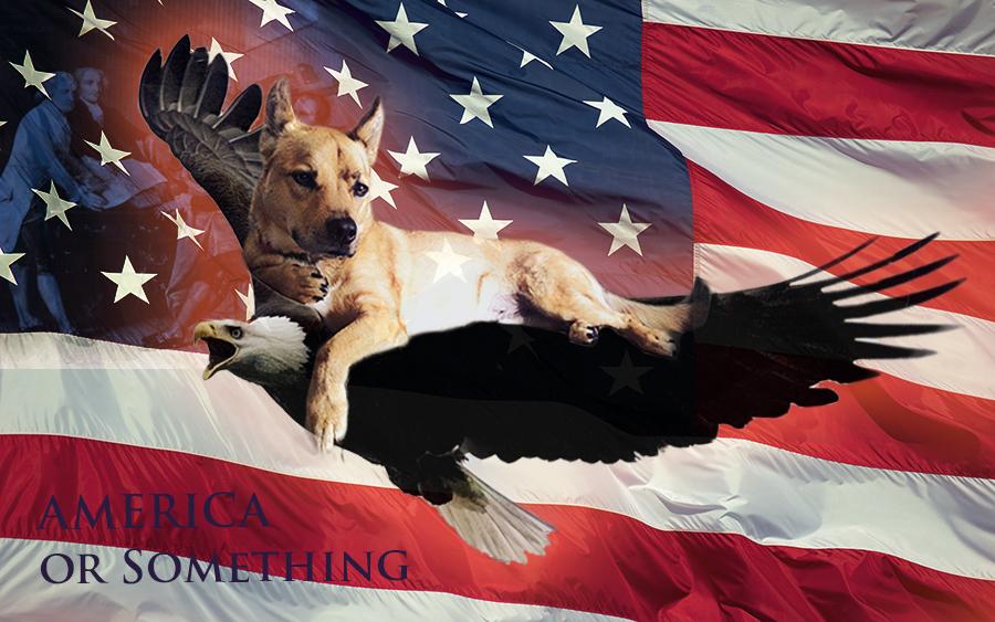 american-flag_00398960.jpg