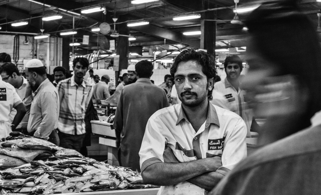 """Fish Market Stare"" - Dubai, UAE"