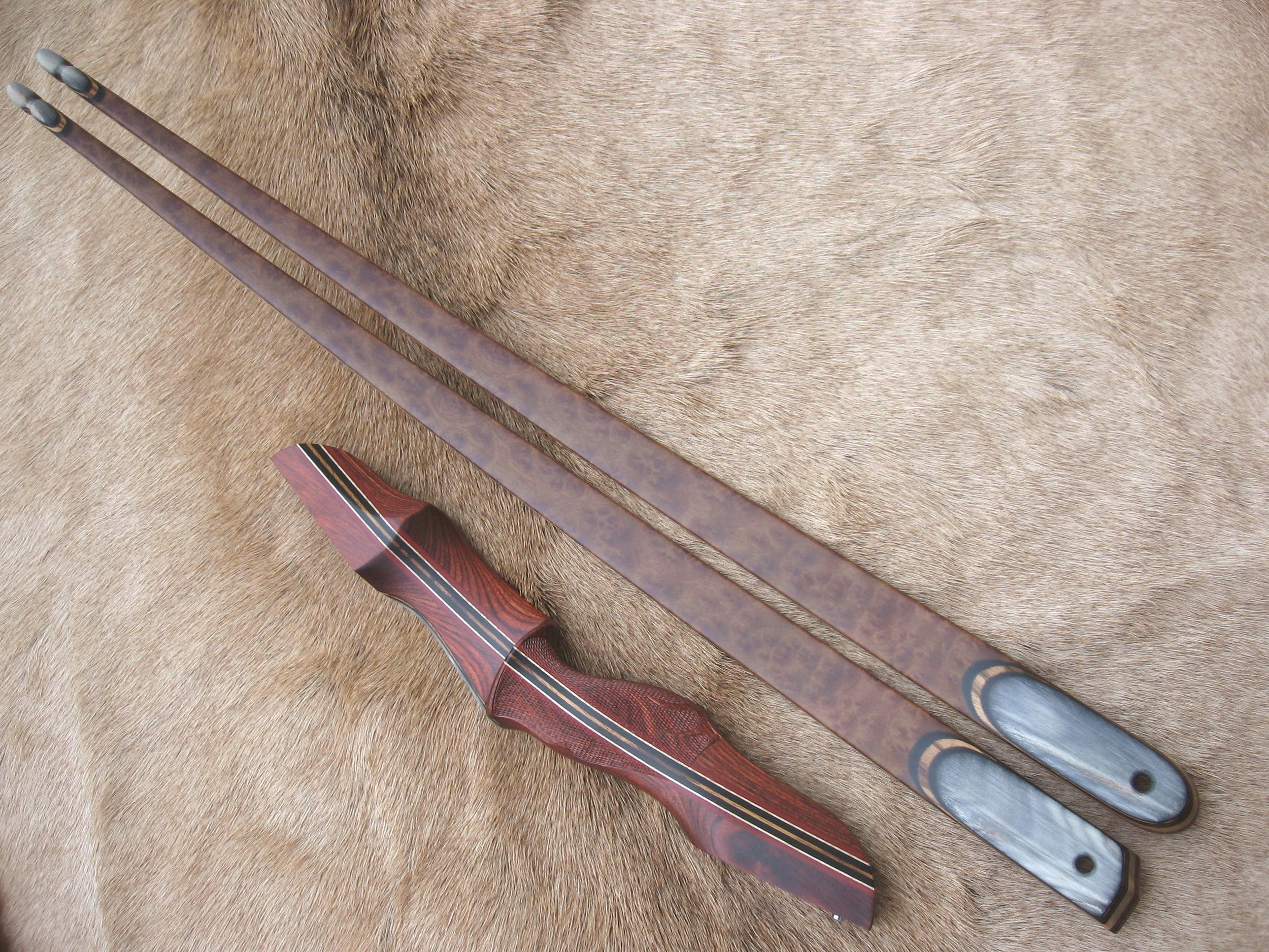 Rosewood Dym Riser- Camphor Burl Limbs with smooth Sheep Horn overlays