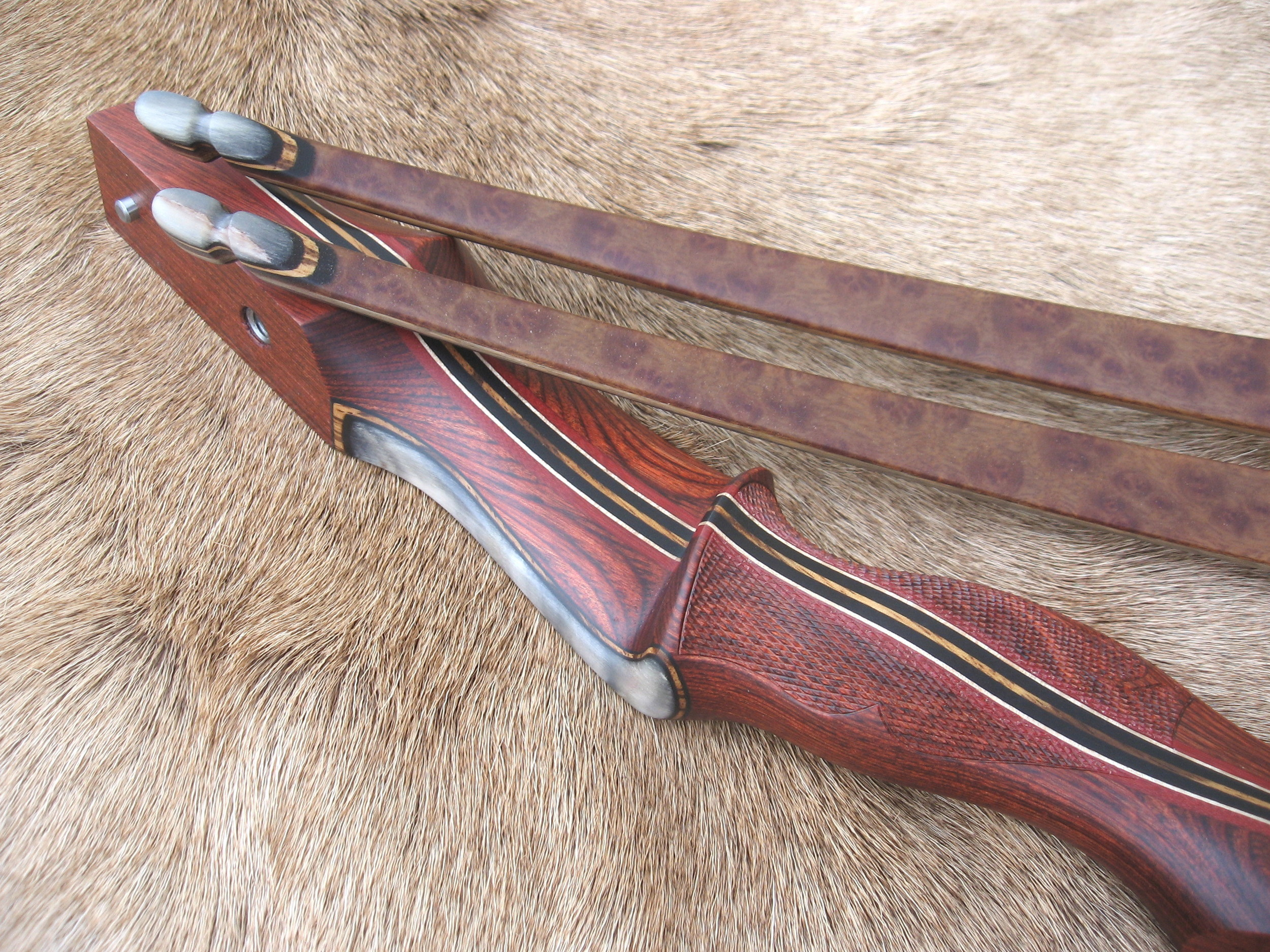 Rosewood Dym Riser w/ smooth Sheep Horn overlay- Camphor Burl LImbs with smooth Sheep Horn tips