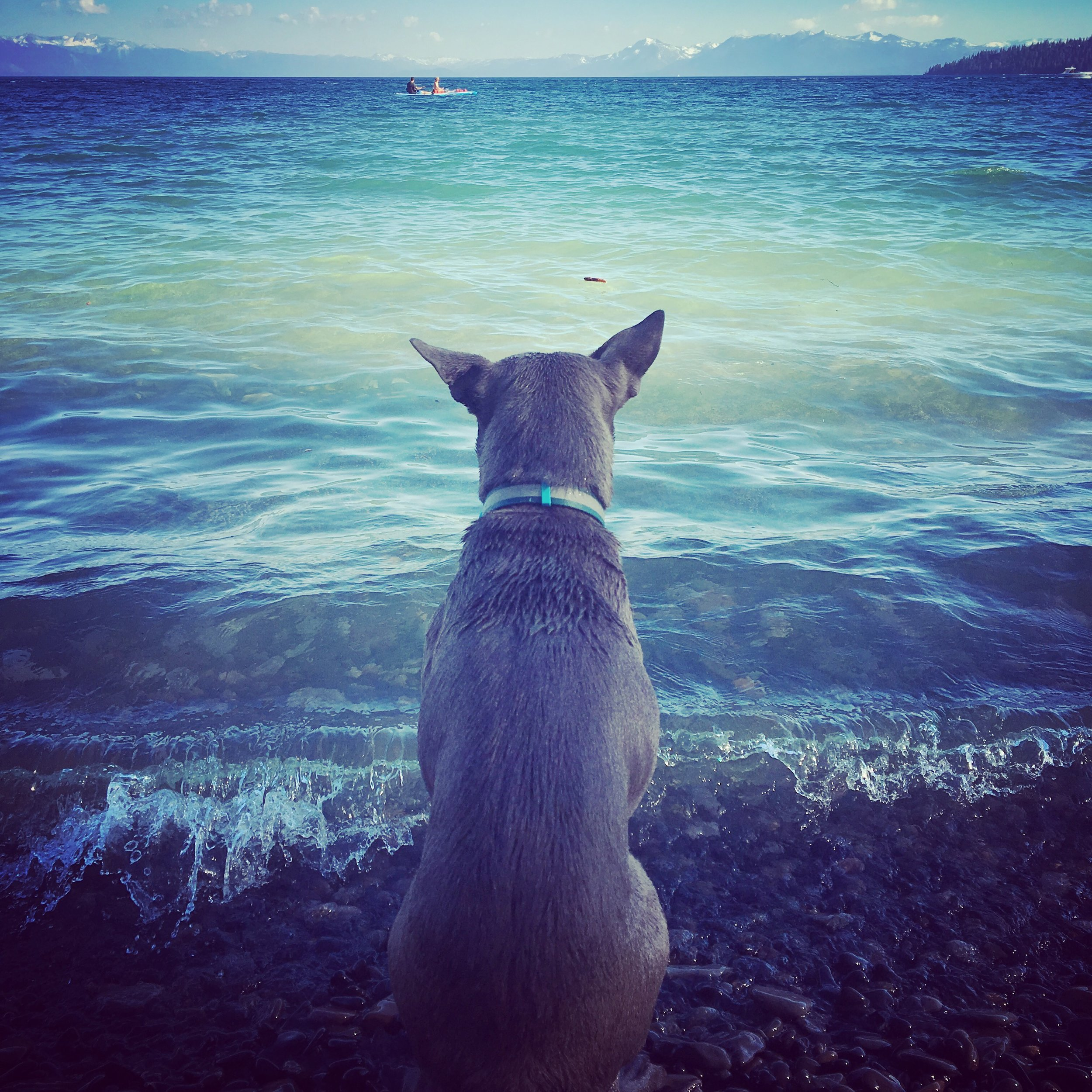 we-are-where-we-are-wanda-lake-JPG