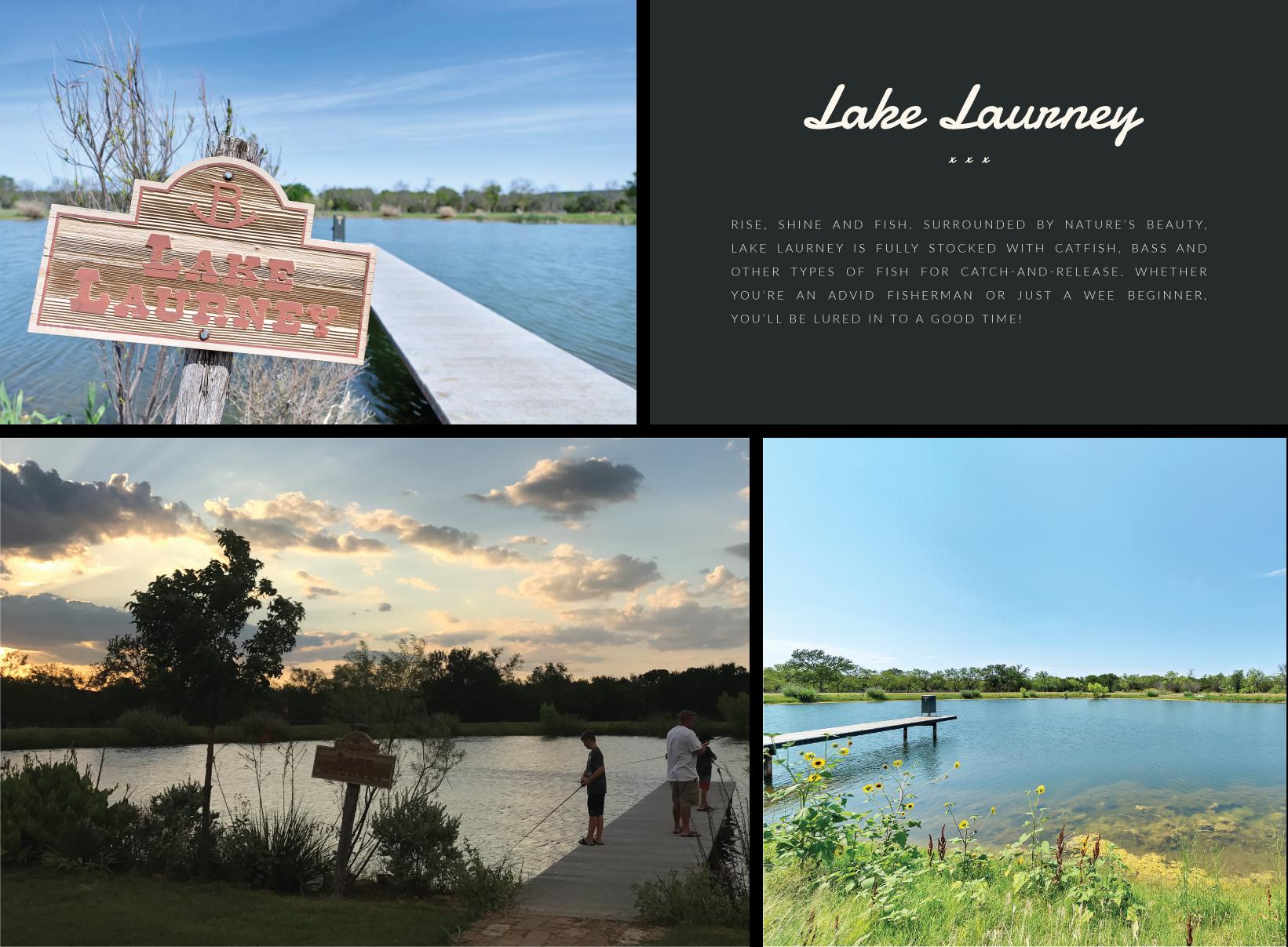 Lake-Laurney.png