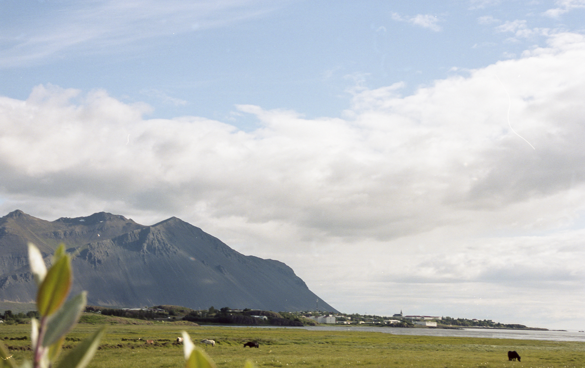 ICELAND037.jpg