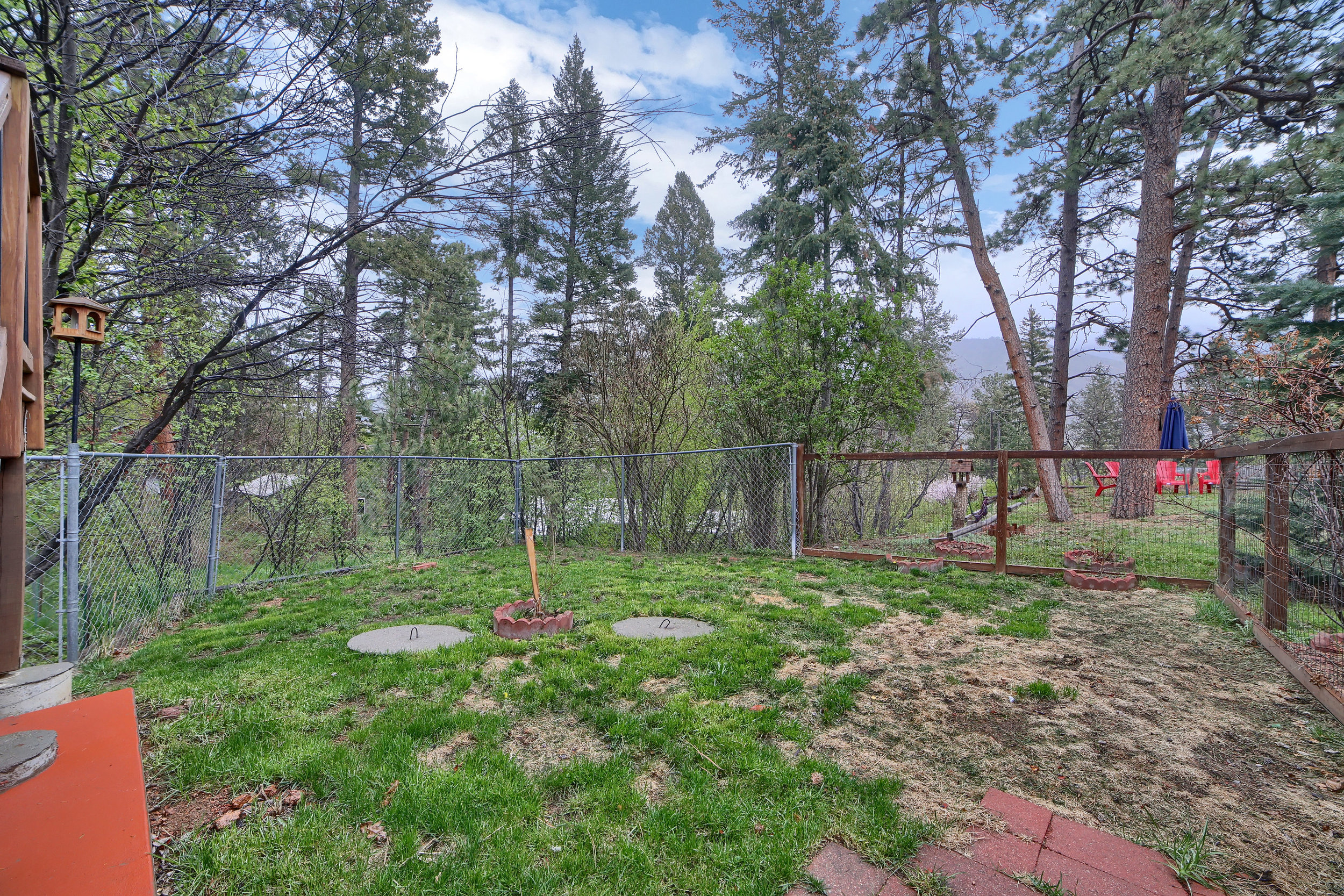 9770 Mountain Road Cascade CO-print-027-23-Exterior  Back-3648x2432-300dpi.jpg