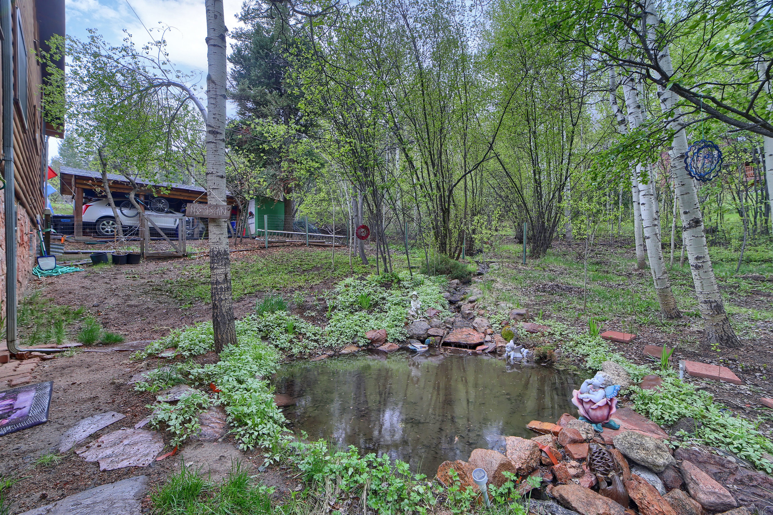 9770 Mountain Road Cascade CO-print-031-22-Exterior  Back-3648x2432-300dpi.jpg