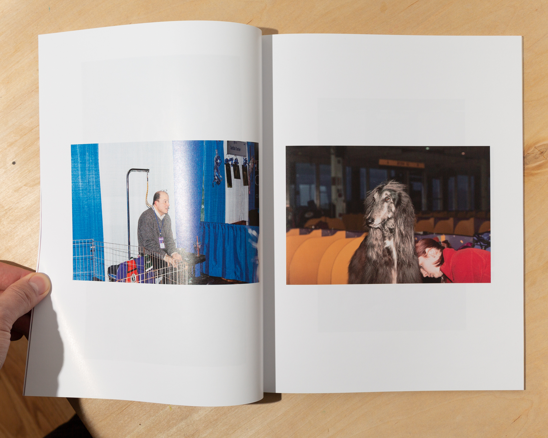 A 60 page magazine with images taken from 2014-2019 (except for 2018) at the Westminster Agility Championships and AKC Meet The Breeds event at Piers 92 & 94 in New York City