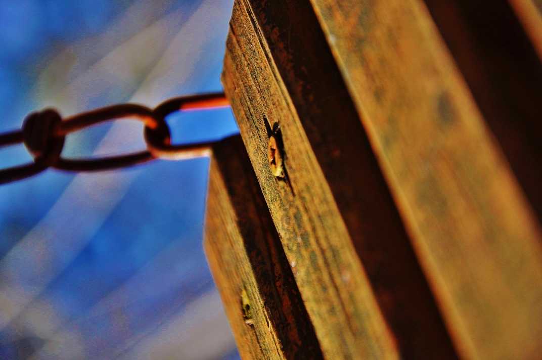 suspended_by_merpyfrost-d6o18np.jpg