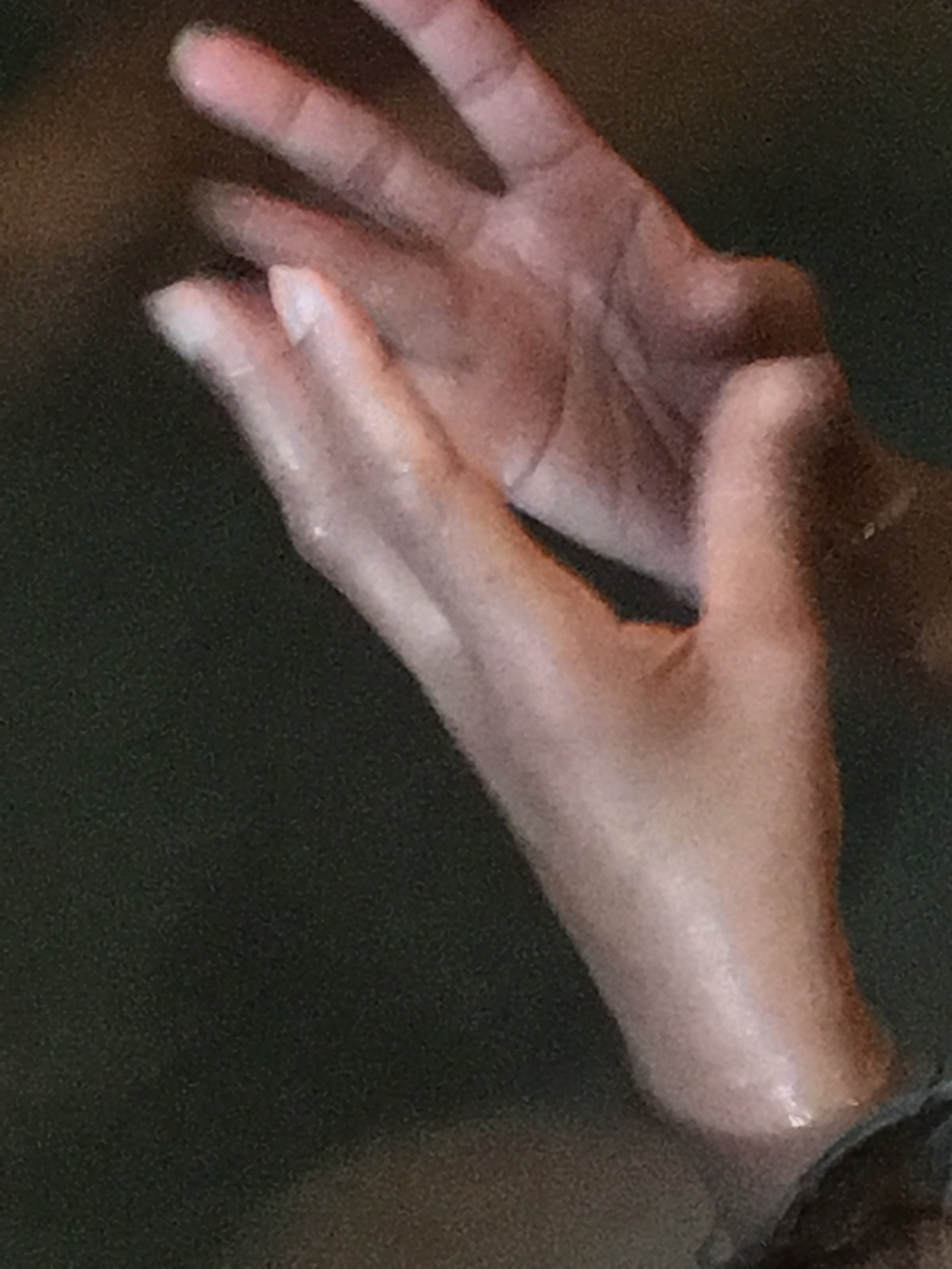 IMG_0691 Neena hands.jpg