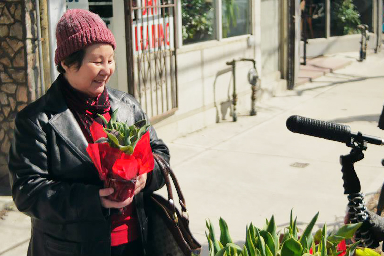 The Tale of a Town Toronto Parkdale Storygathering Team Trading Tulips for Stories