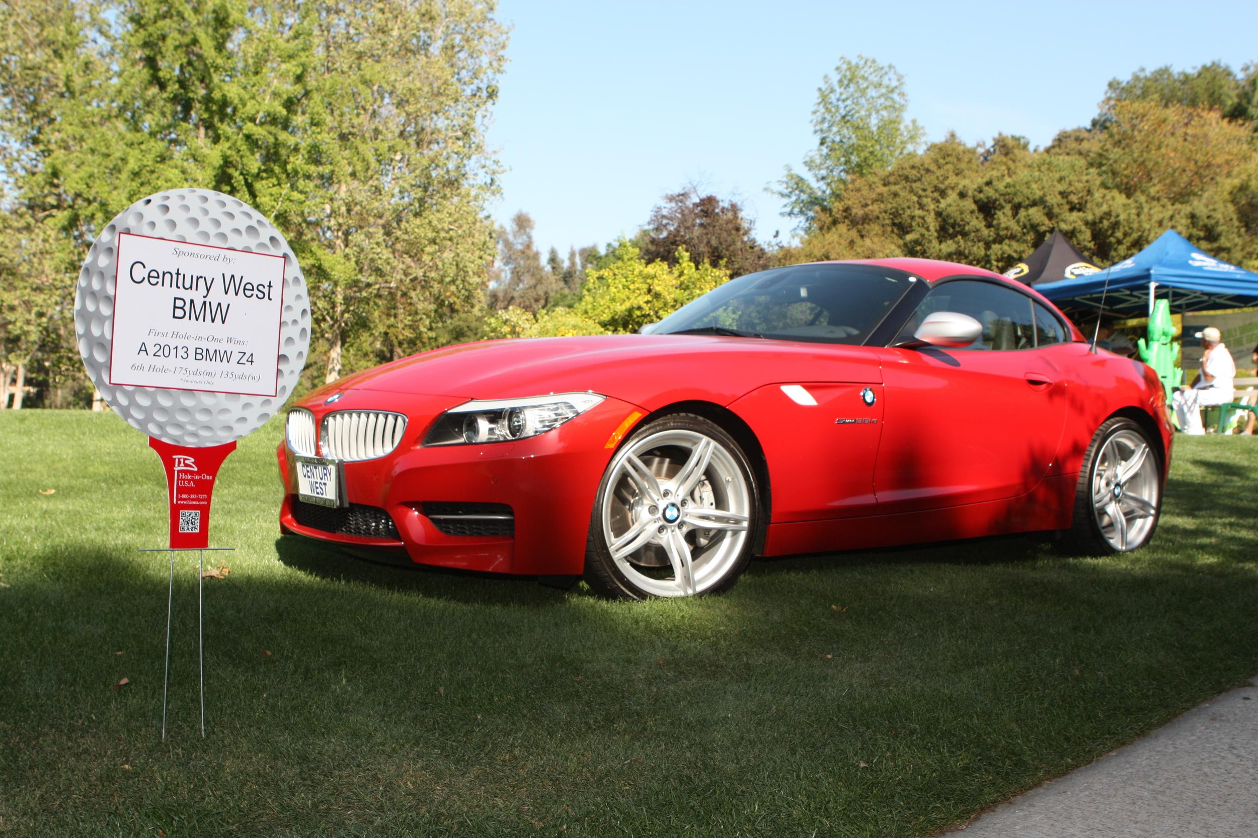 TL #17- BMW.jpg