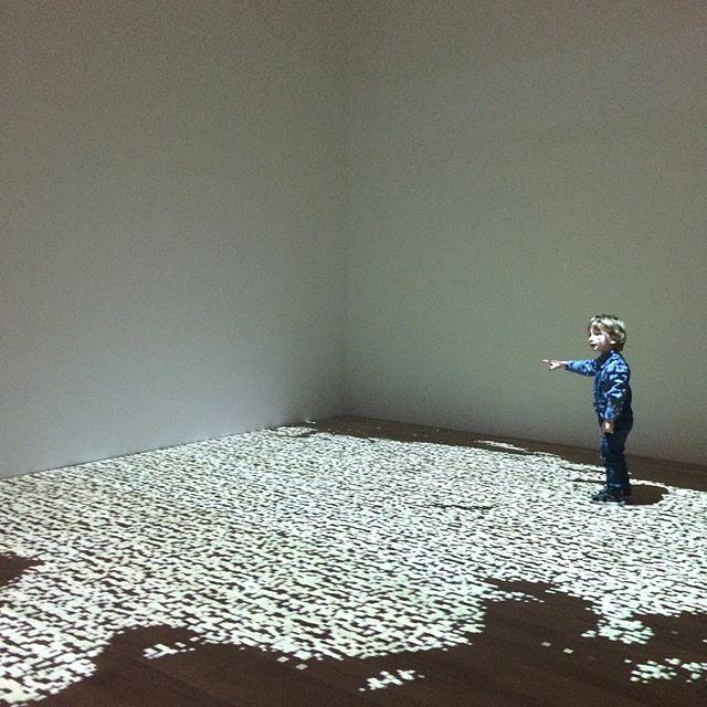 Basking in #digitalart #animatedart #dynamics #projections #digits #installationart #arteverywhere