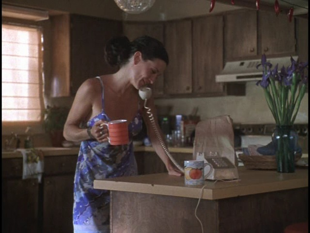 Karina (Courteney Cox) in the kitchen of Edward's crummy Vegas aprtment.