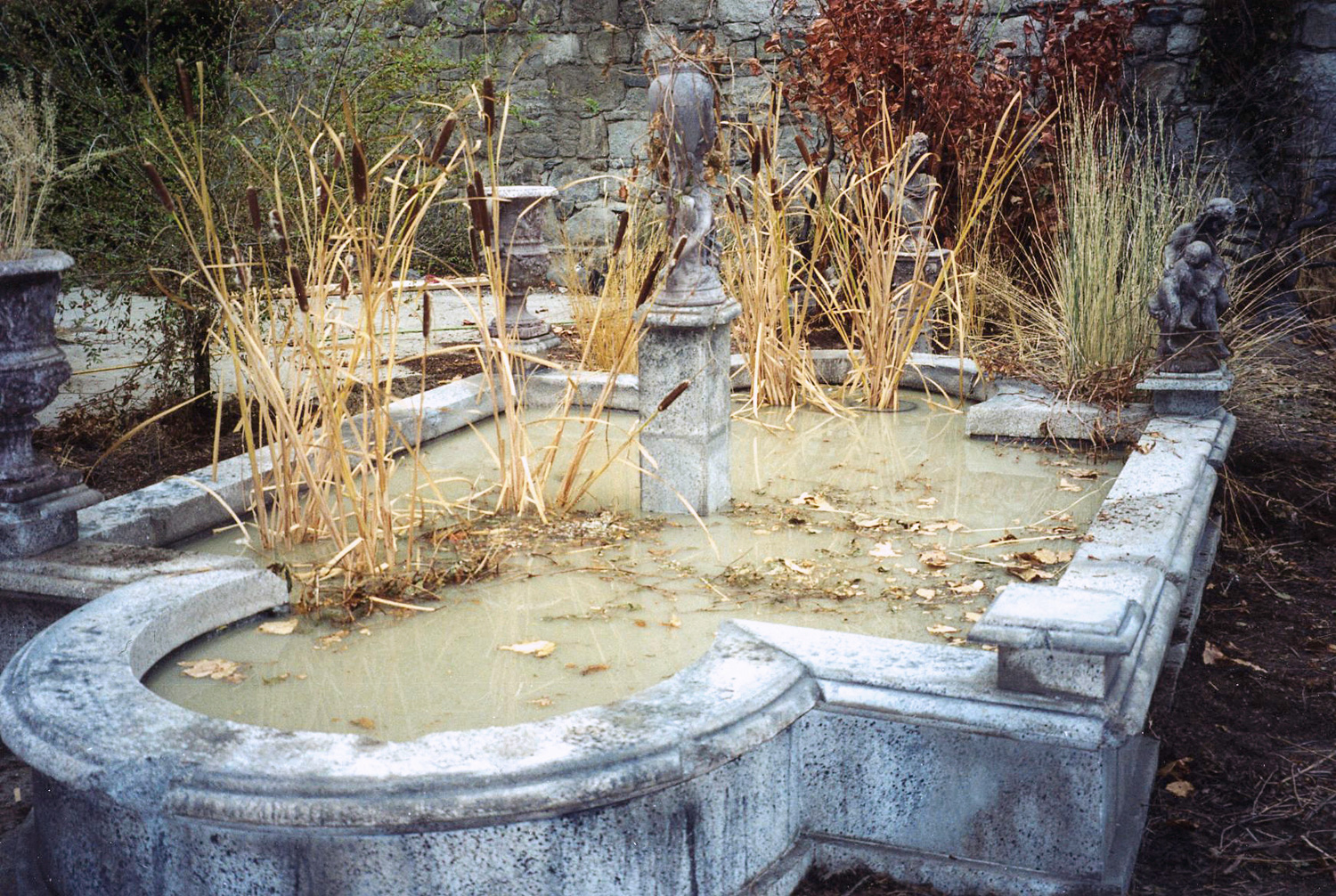 Here is a shot of the practical, formal English pond gone to ruin.