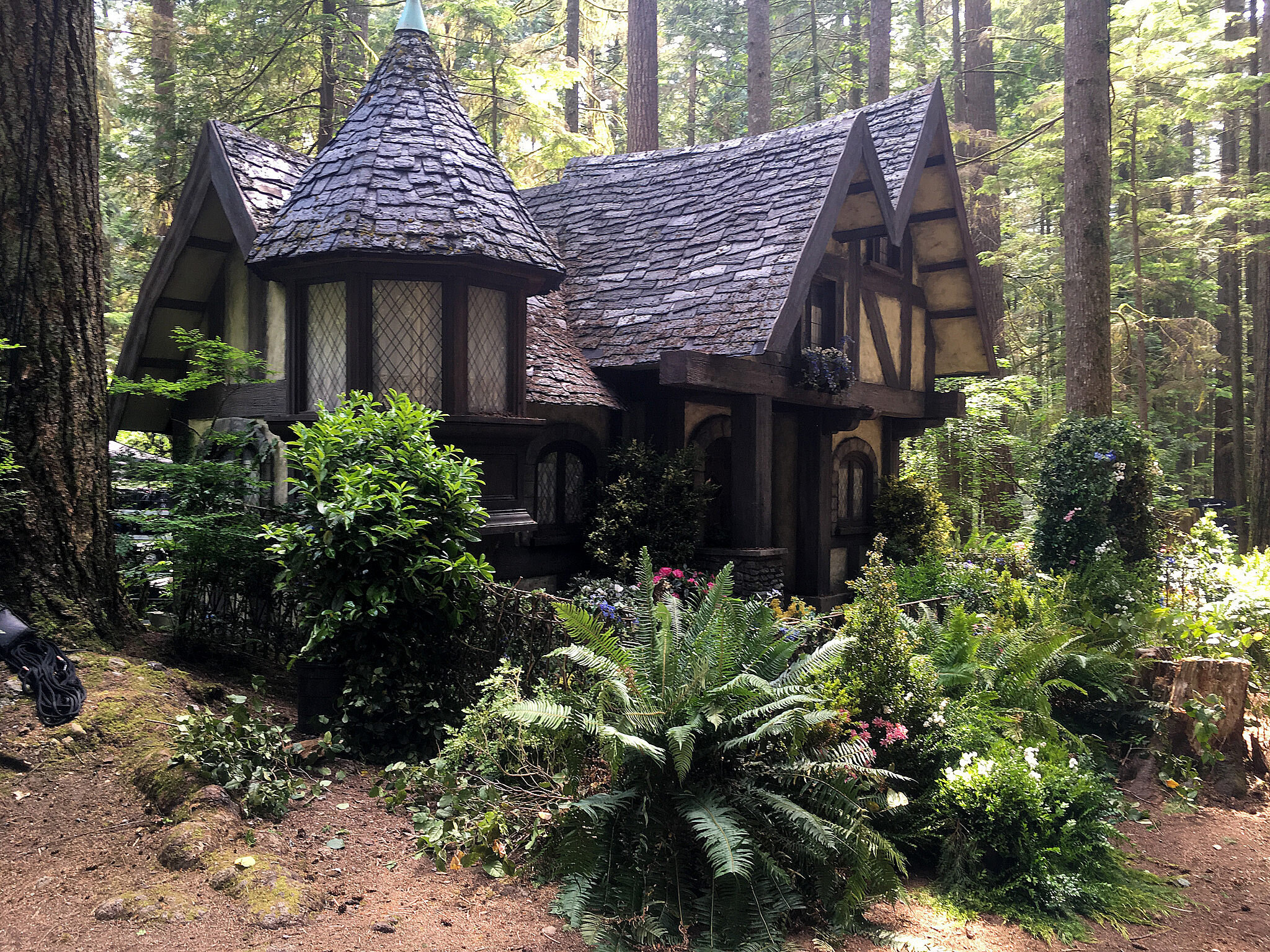 Another view of Audrey's retreat based on Flora, Fauna and Merryweather's fairy cottage from 1959's Disney classic Sleeping Beauty.