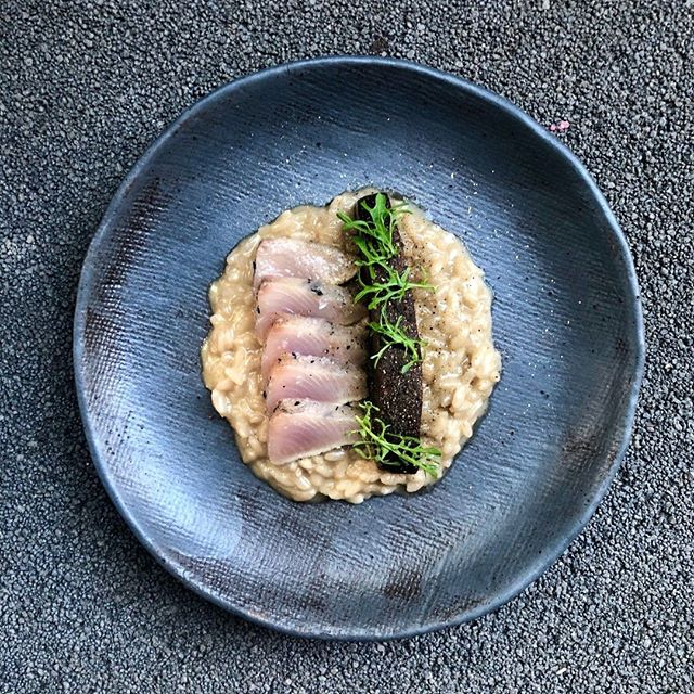Bonito | Dashi Risotto | Mushrooms⠀ ⠀ Open from 12pm⠀ ⠀ Call - 49987264 | Email - reservations@exprestaurant.com.au⠀ ⠀ Book online here 👉 link in bio⠀ ⠀ #EXPeriencethis #australiancuisine #localproduce #pokolbineats #huntervalley #destinationNSW #exprestaurant #chef #cheflife ⠀ #huntervalleydining #regionalrestaurant #EXP #getafawkfull #mypokolbin