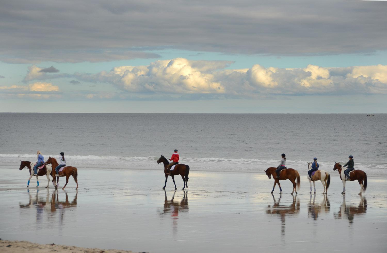 Hampton Beach Horse Club.jpg
