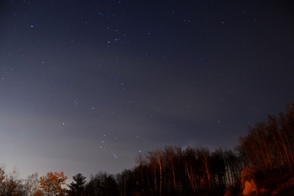 Orion is ascending above the treeline in this photo by Patricia Evans. See more photos by Patricia on her website.