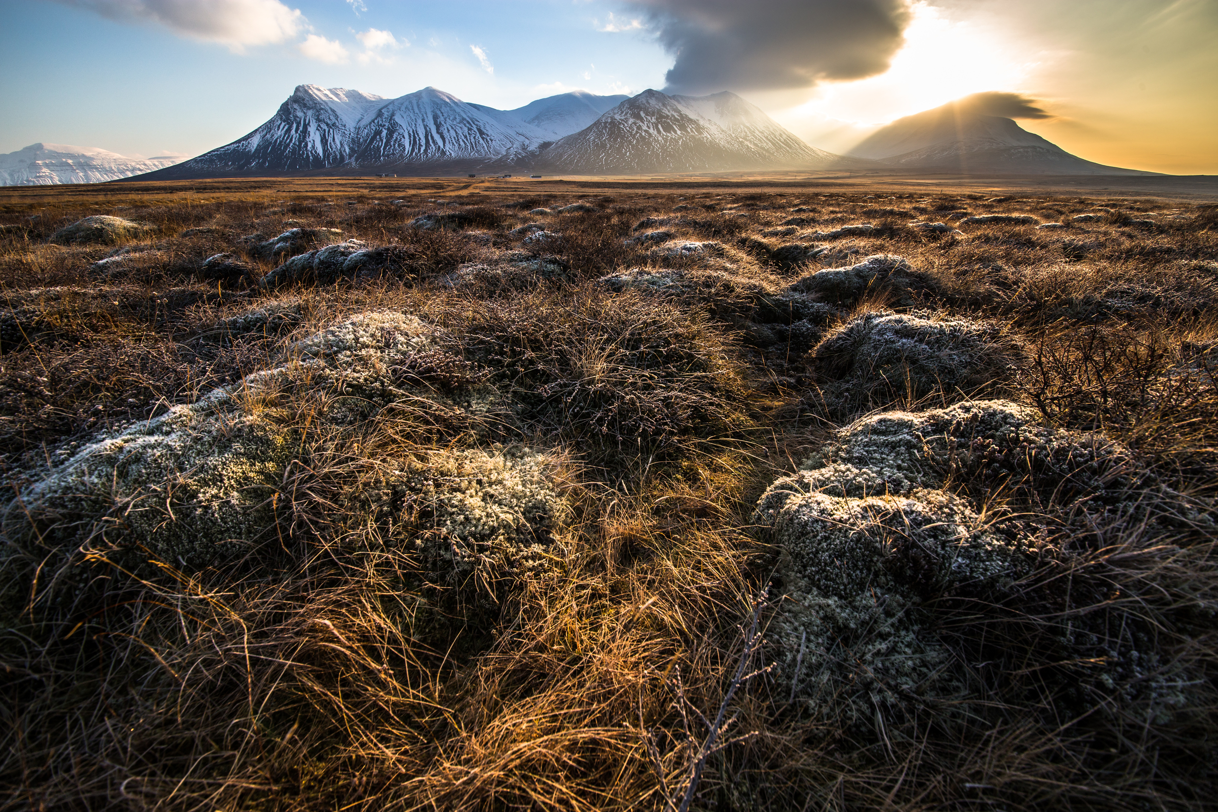 Frozen dawn, inland Iceland