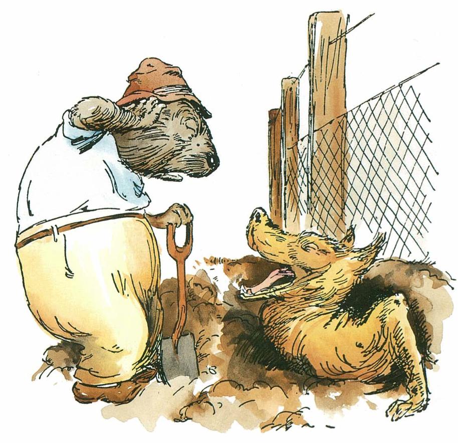 Norman Lindsay Illustrations   ©  H. C. & A. Glad