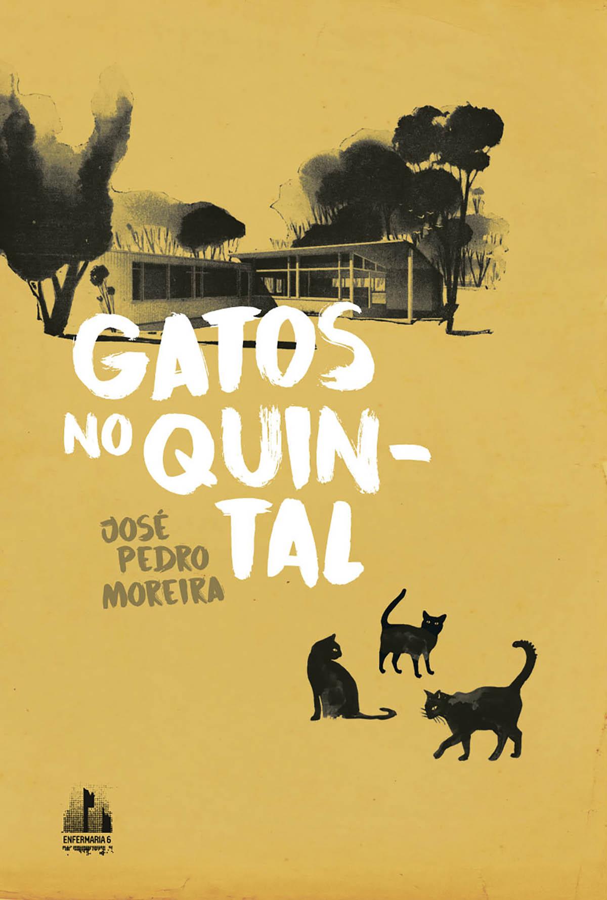 José Pedro Moreira, Gatos no quintal