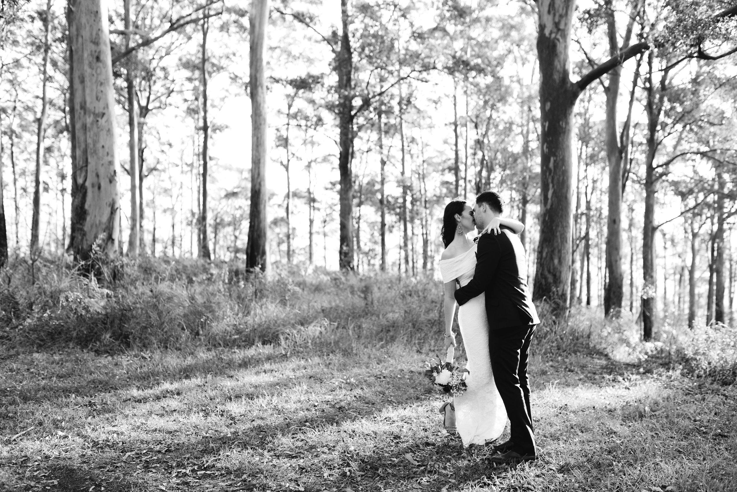 brisbane-gold-coast-sunshine-coast-wedding-photographer-mount-tamborine-wedding-1-54.jpg