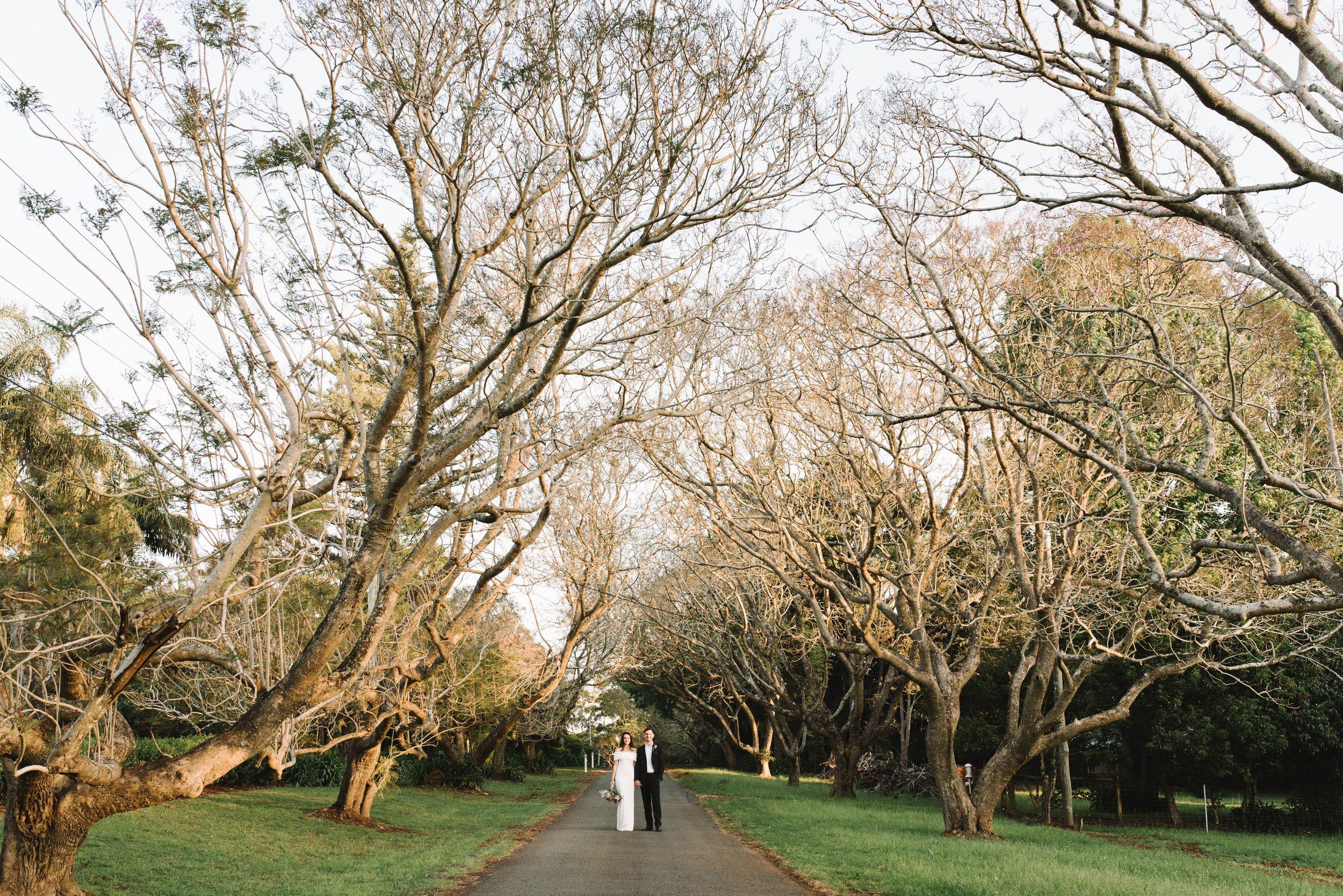 brisbane-gold-coast-sunshine-coast-wedding-photographer-mount-tamborine-wedding-1-59.jpg