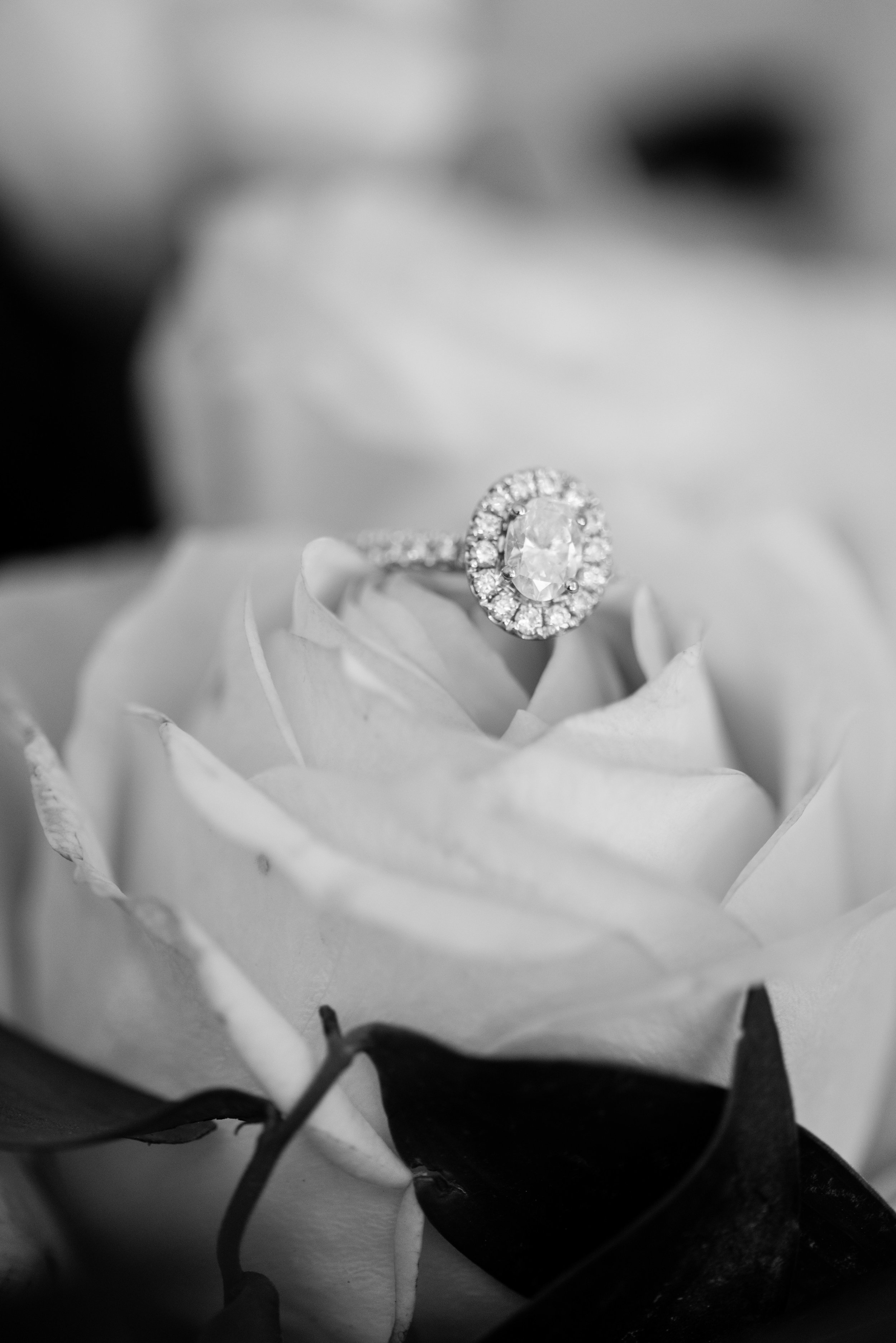 brisbane-city-wedding-photographer-romantic-wedding-6.jpg