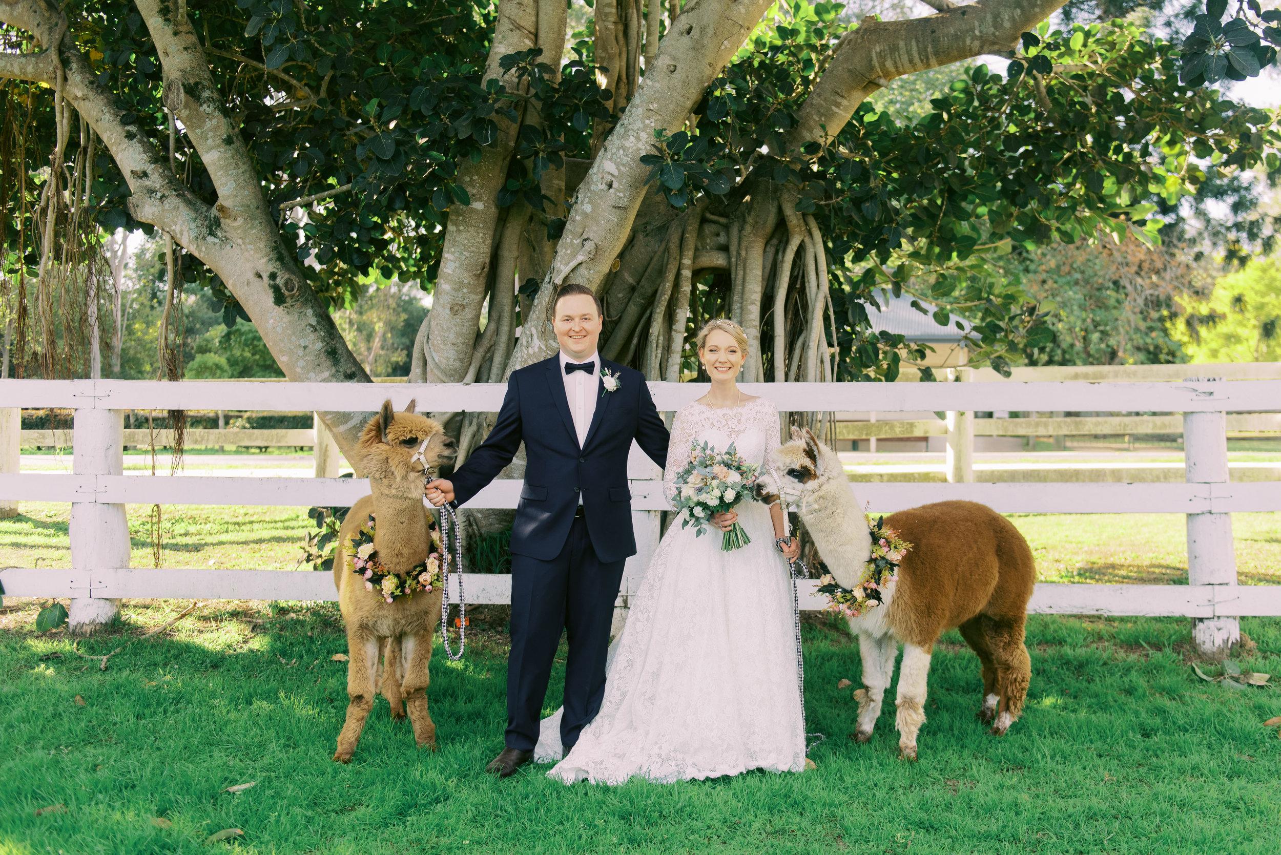 brisbane-gold-coast-sunshine-coast-tweed-romantic-fine-art-wedding-photography-lauren-olivia-35.jpg