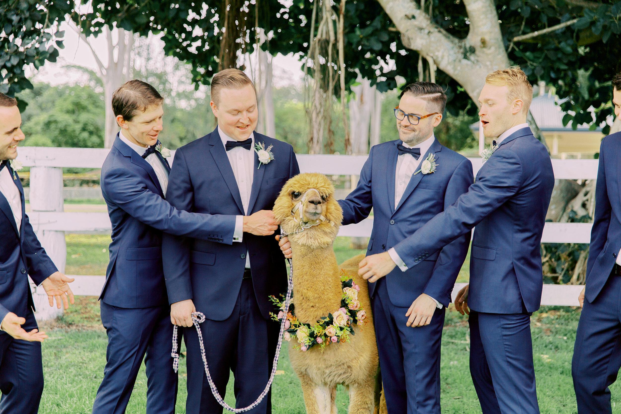 brisbane-gold-coast-sunshine-coast-tweed-romantic-fine-art-wedding-photography-lauren-olivia-36.jpg