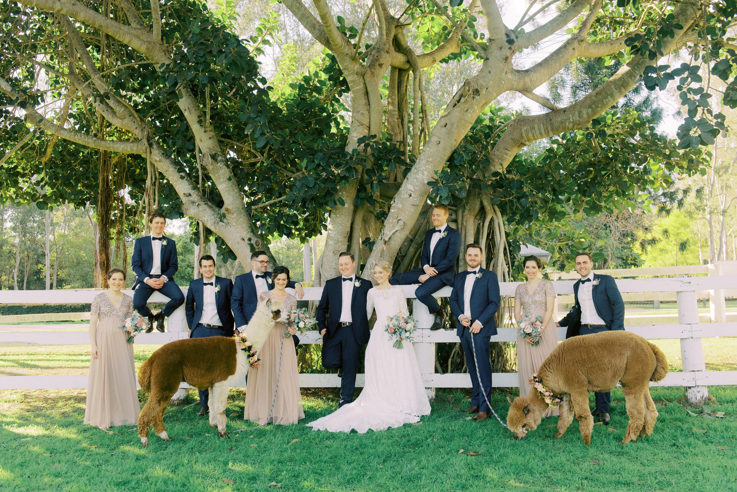 brisbane-gold-coast-sunshine-coast-tweed-romantic-fine-art-wedding-photography-lauren-olivia-39.jpg
