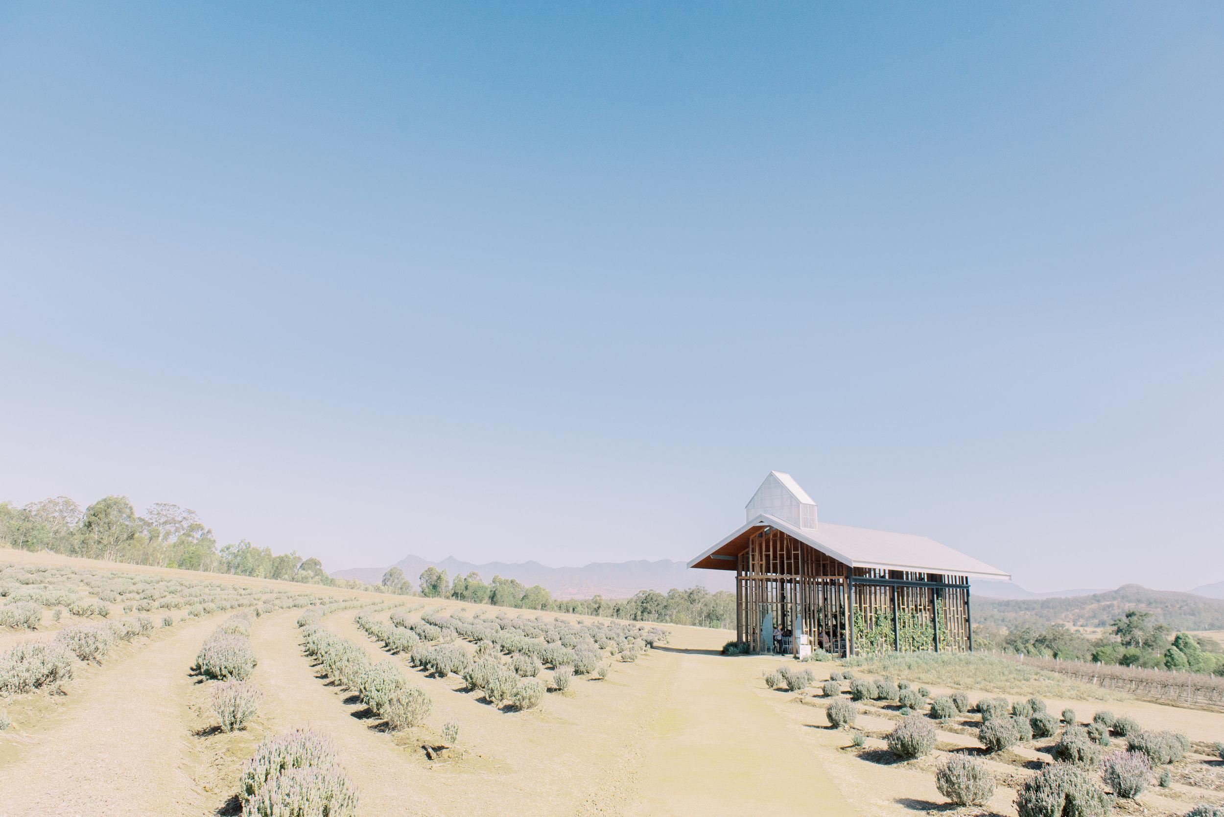 Kooroomba-Vineyard-Lavender-Farm-Wedding-Fine-Art-Lauren-Olivia-34.jpg