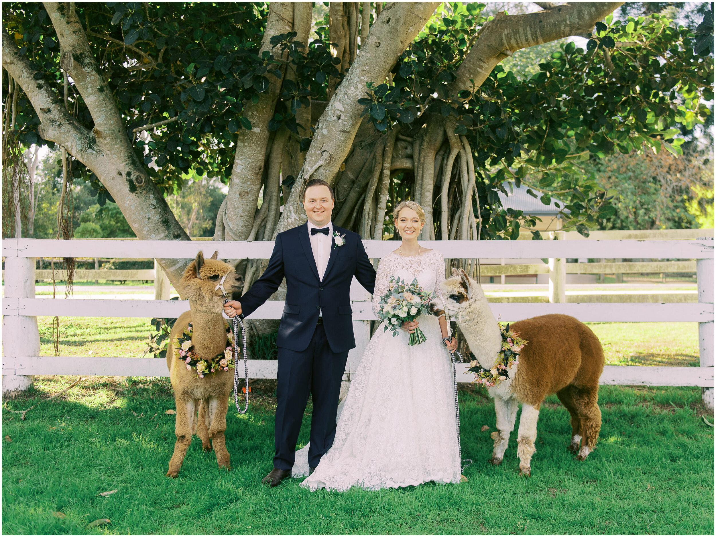 brisbane-film-wedding-photographer-lauren-olivia-luxury-wedding-australia-01-12.jpg