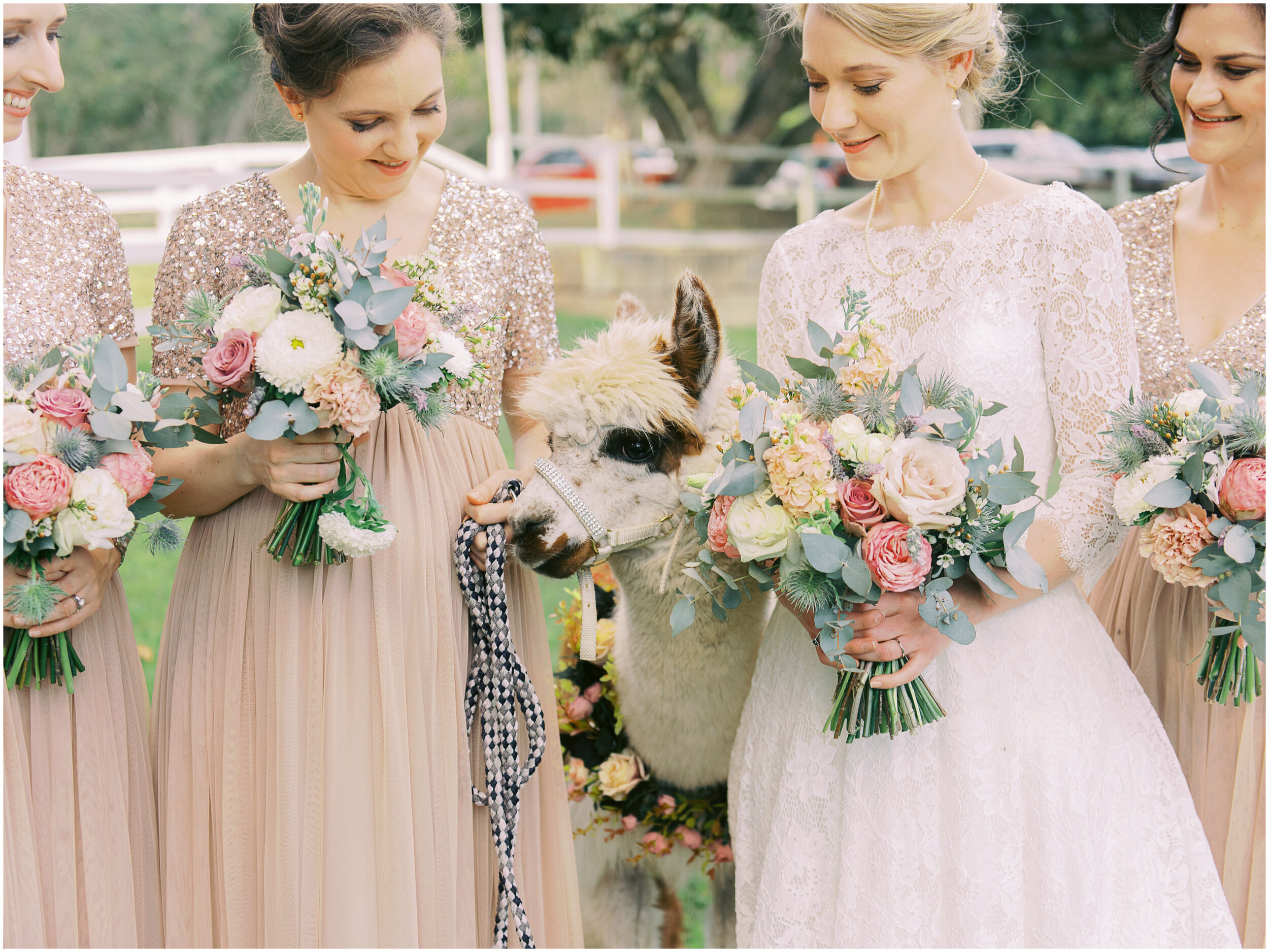 brisbane-film-wedding-photographer-lauren-olivia-luxury-wedding-australia-01-13.jpg