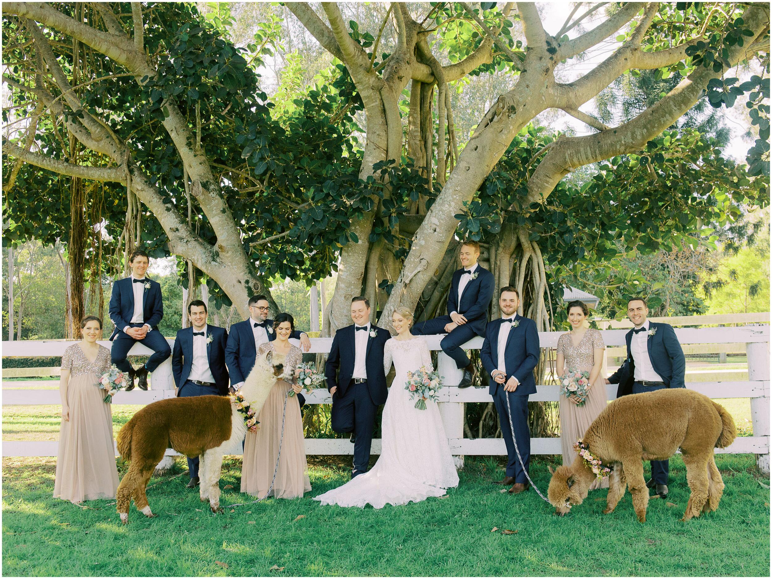 brisbane-film-wedding-photographer-lauren-olivia-luxury-wedding-australia-01-16.jpg