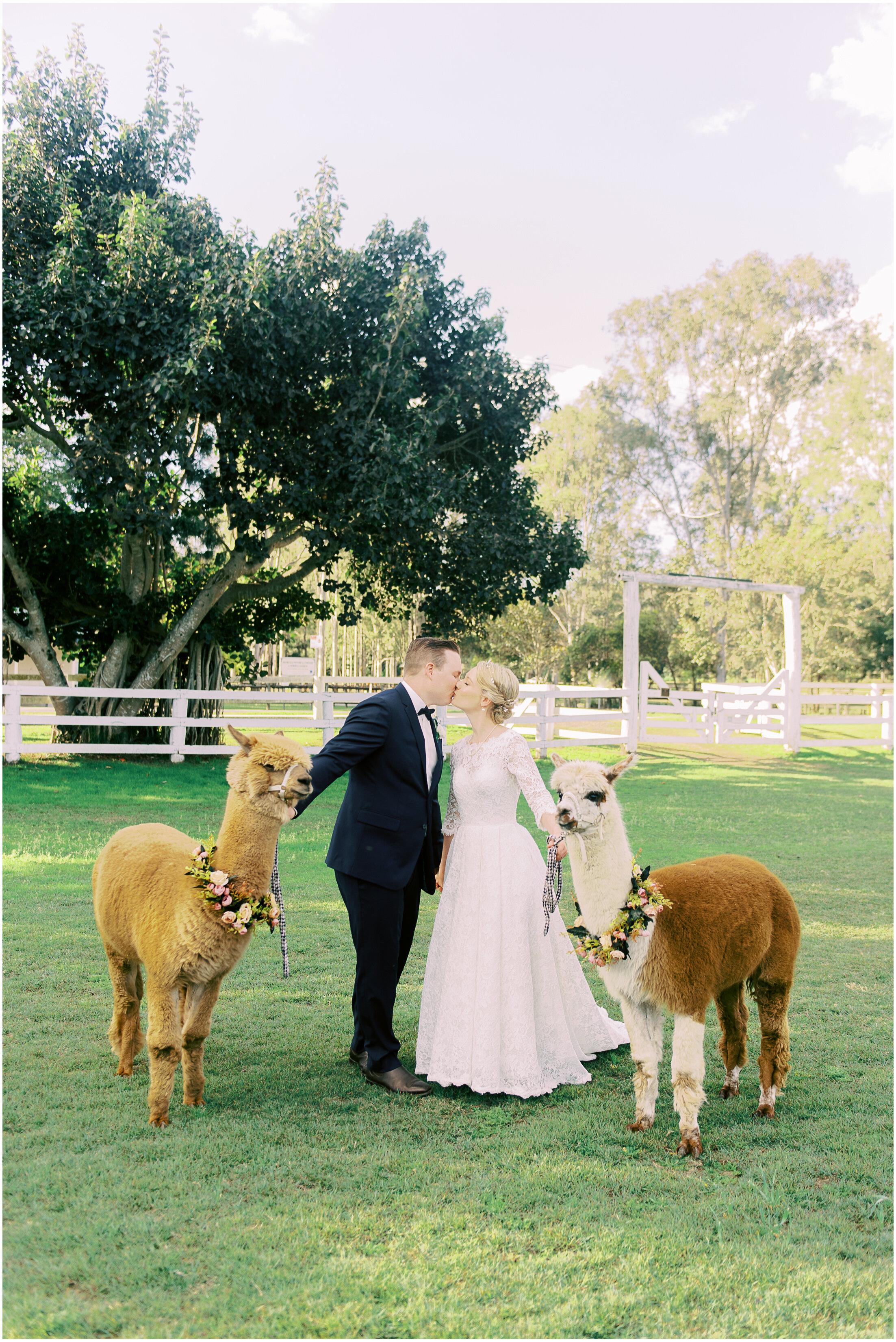 brisbane-fine-art-wedding-photographer-lauren-olivia-luxury-wedding-australia-15.jpg