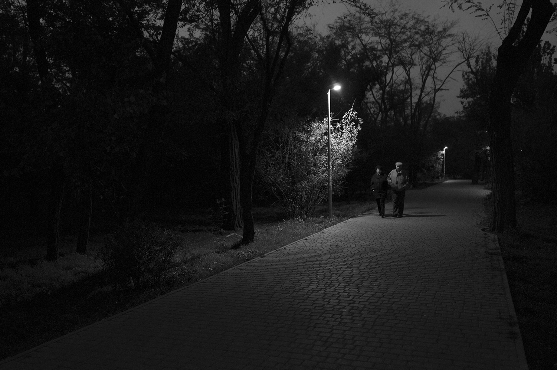 Old couple wondering into the darkness ofTarasa Shevchenka Park