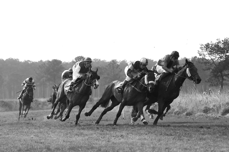 The jockeyDavid Cottin fighting to keep his position.