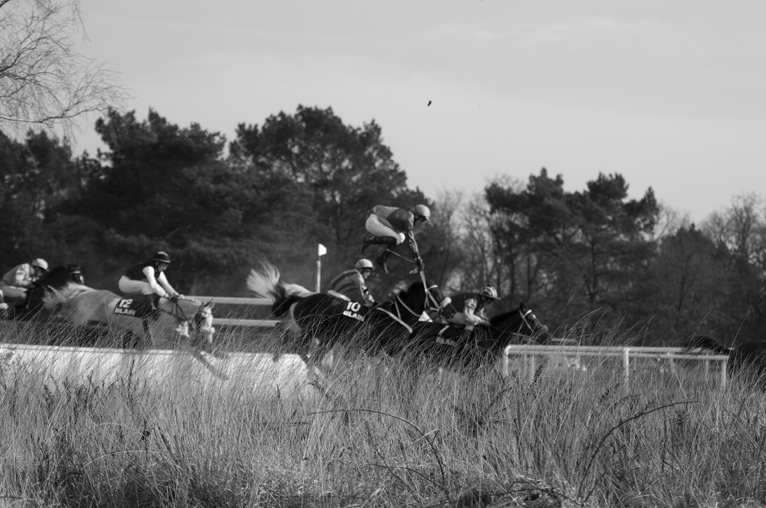 Jokey flying mid-air after failing on one of the jumps during a steeplechasing race.