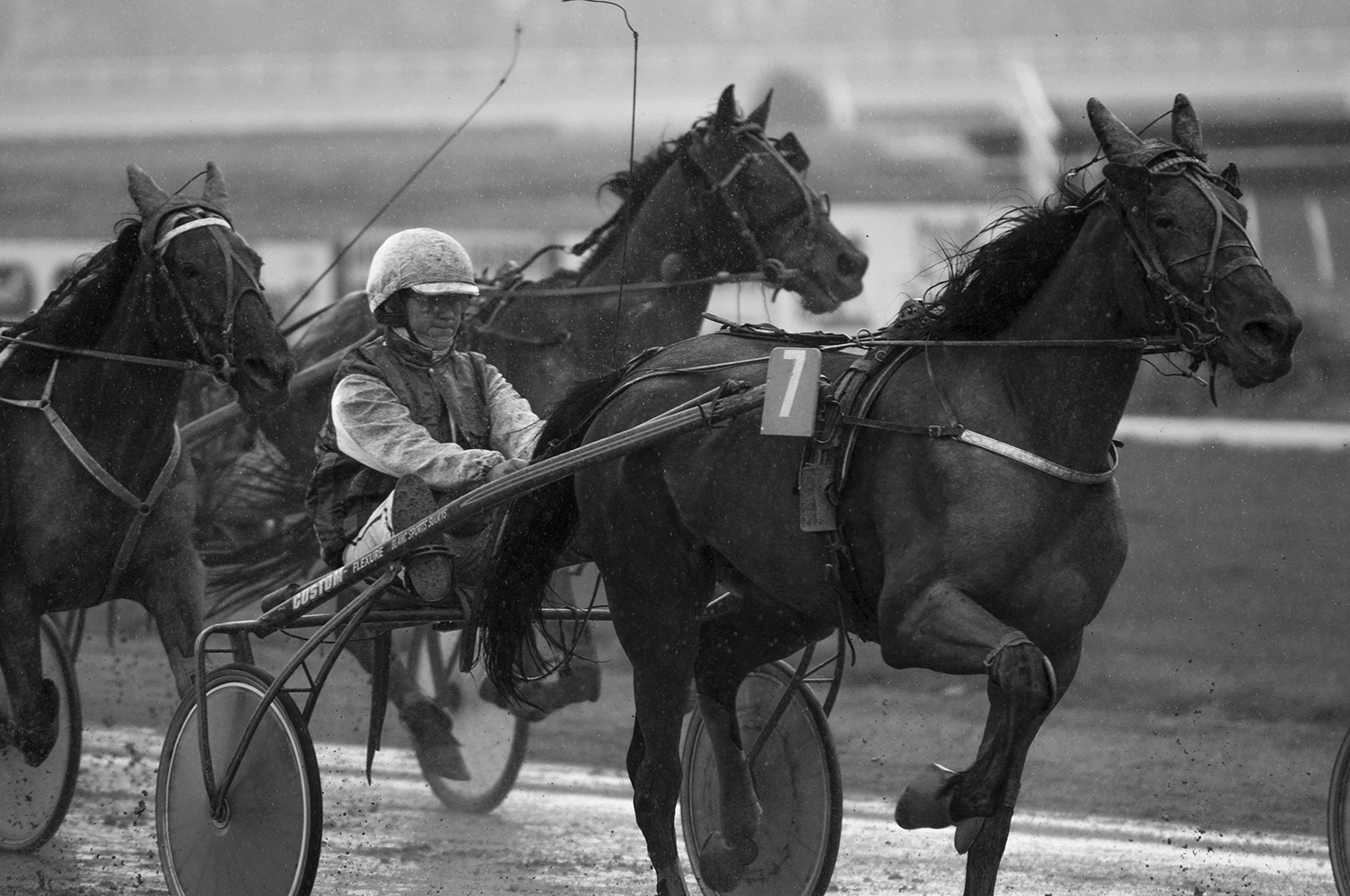 The driverS. Beaucamp and his horse Una Maris in the middle of a rainyharnessrace.