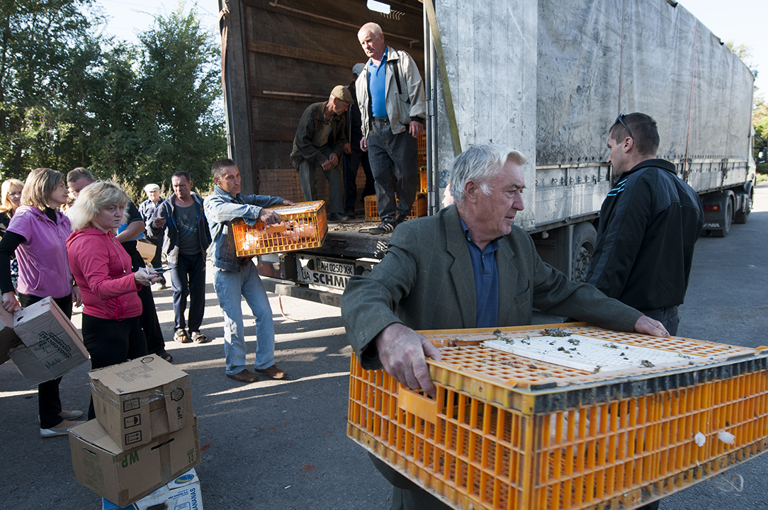Villagers taking out chicken cages from the FAO truck in Opytne.