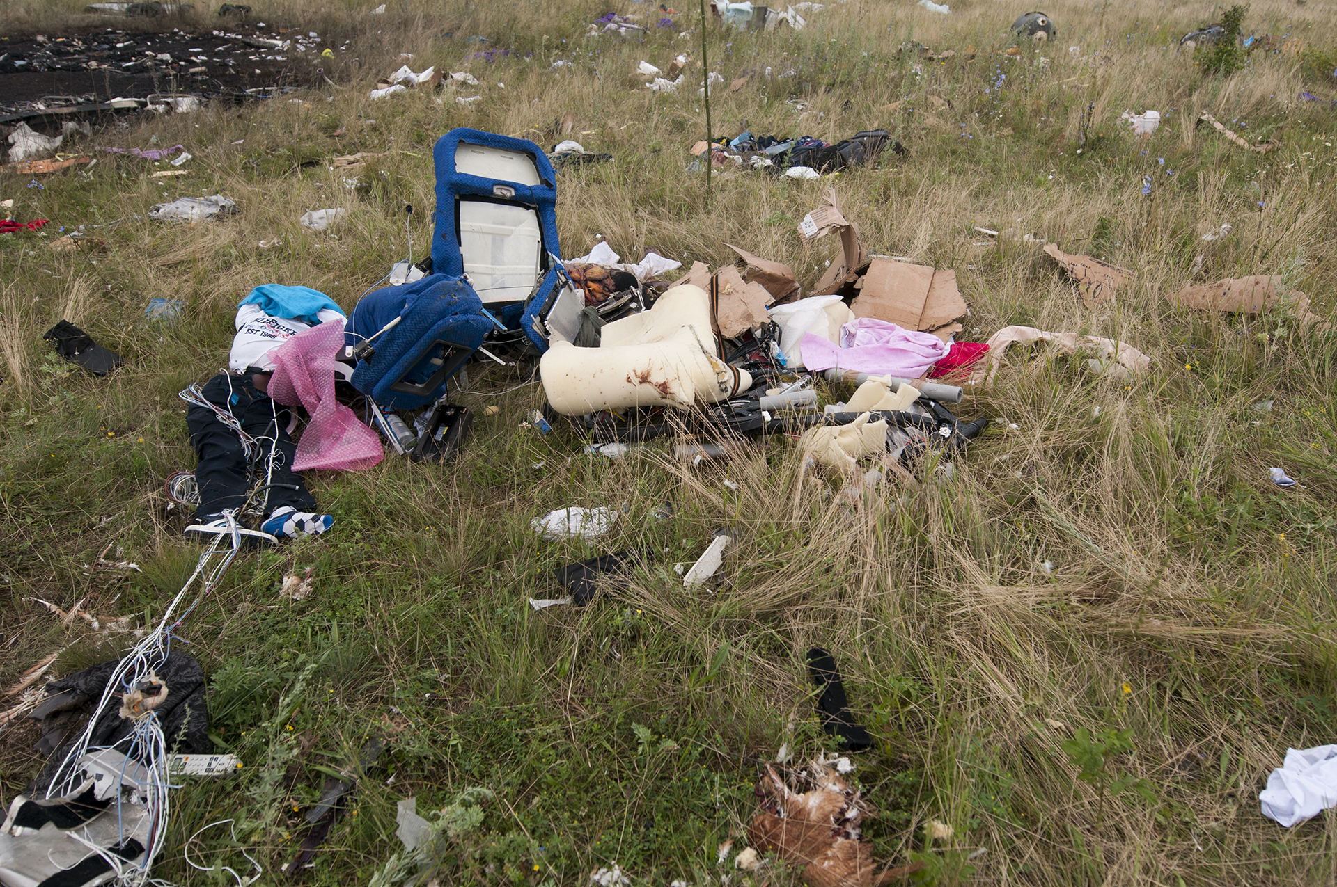 The remains of a MH17 passenger still strapped to his seat