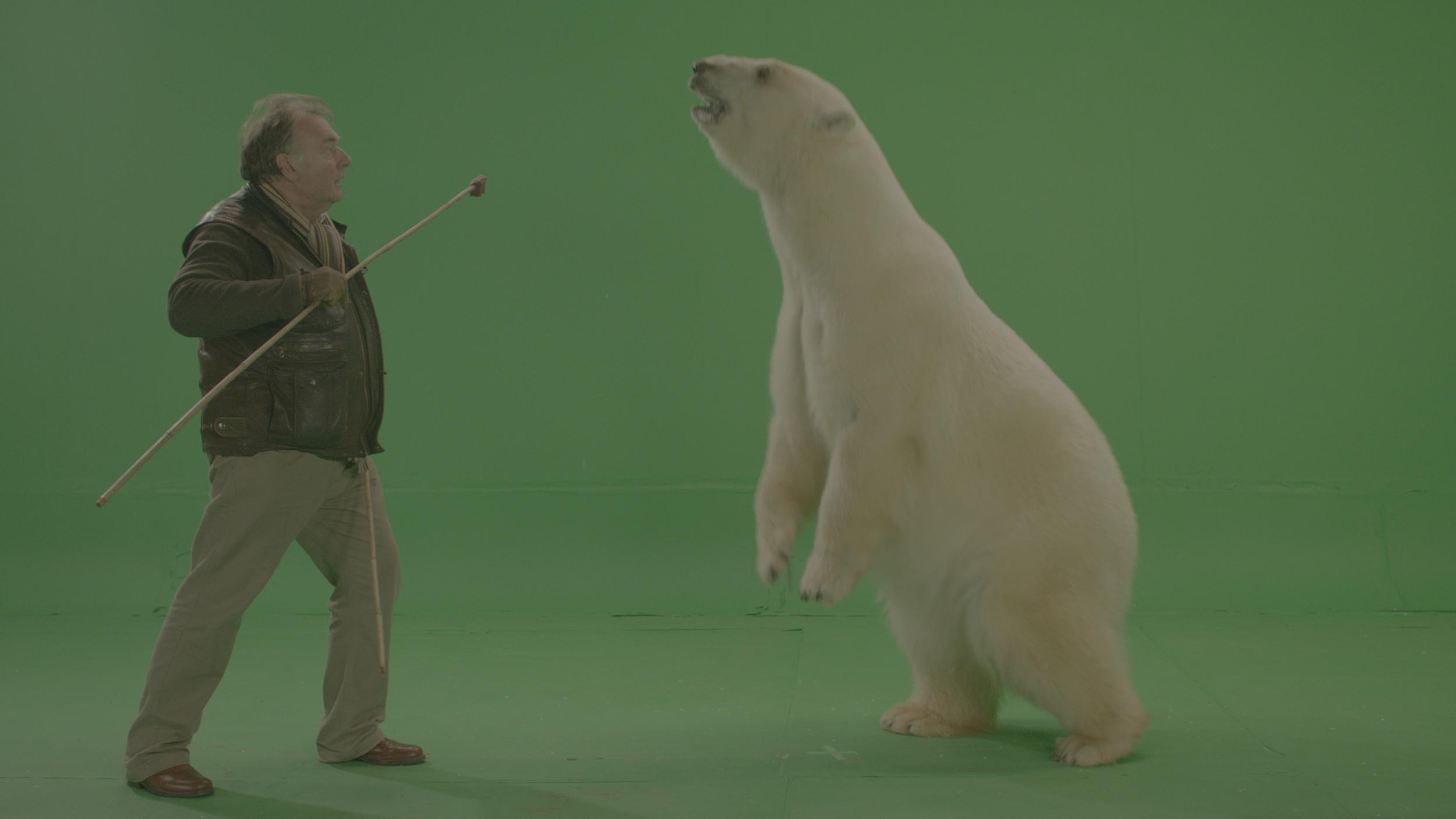 Oxford polar bear.jpg