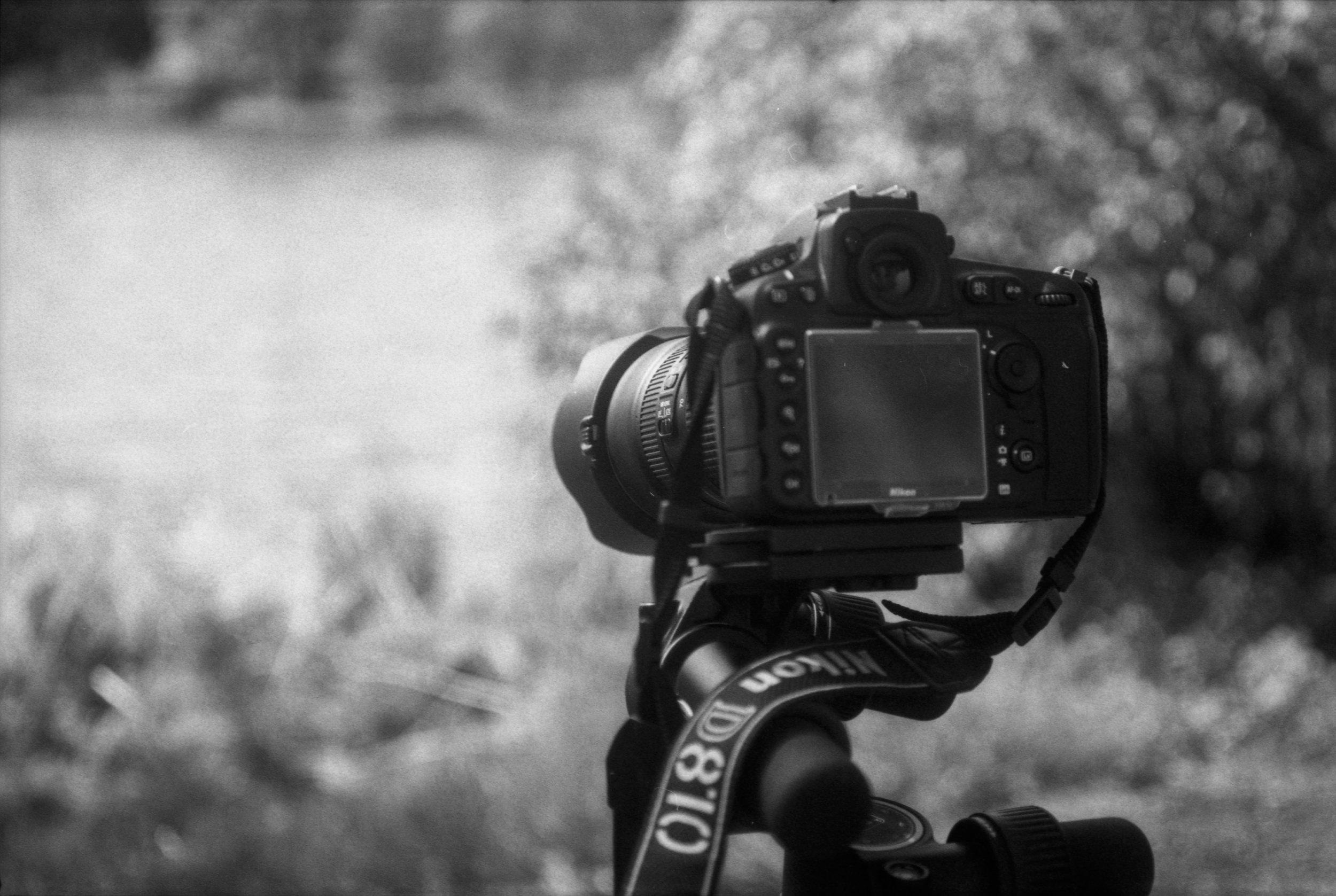 Film Scans_Nikon.jpg