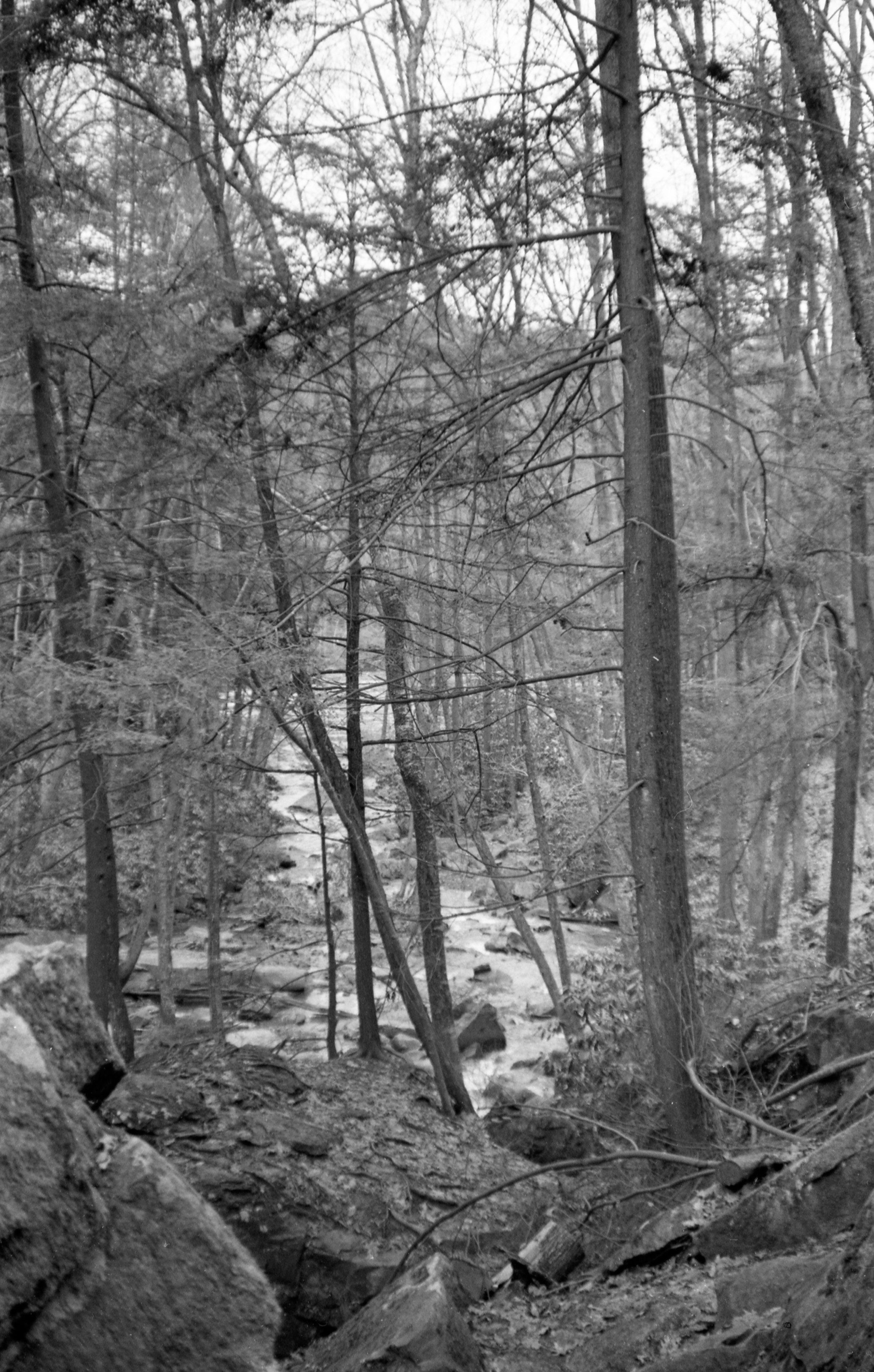 Film Scans-69.jpg