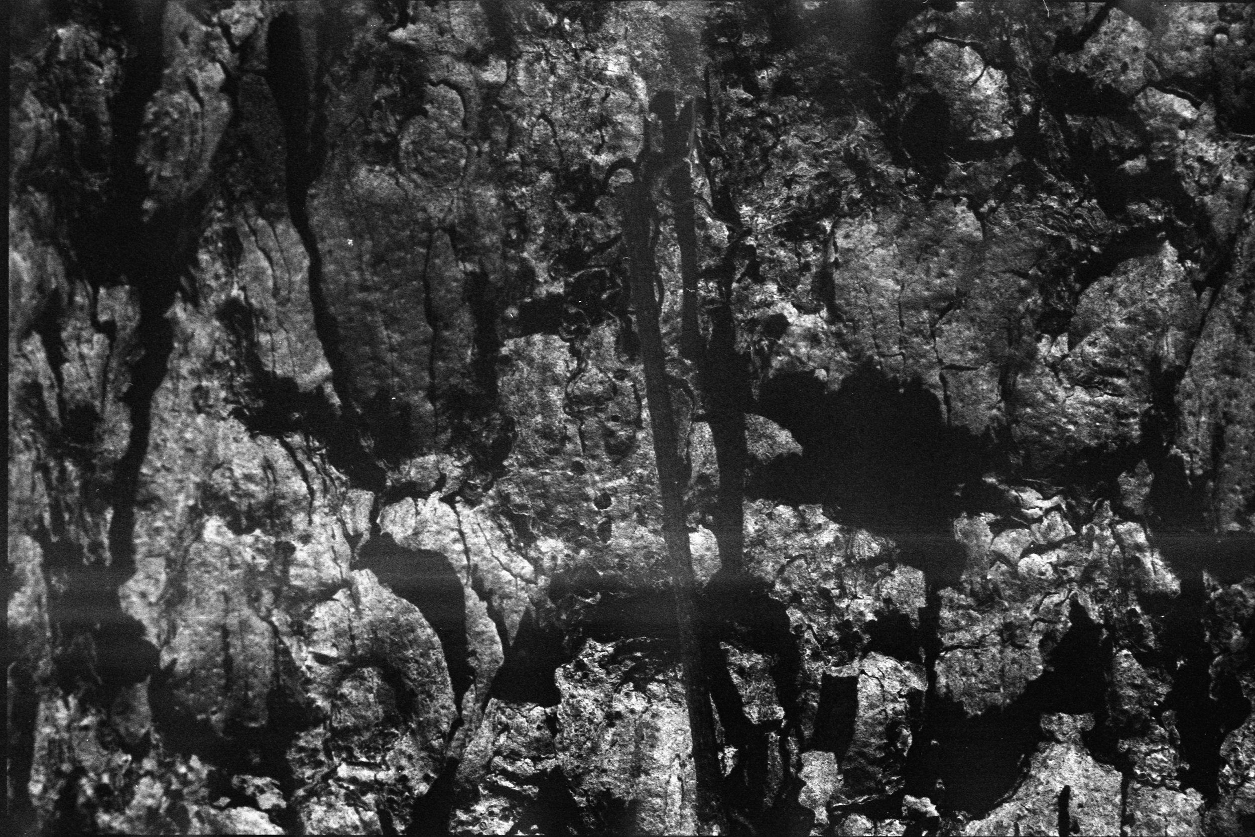 Film Scans-127.jpg