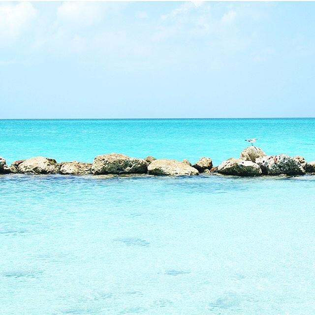 • beachy keen •