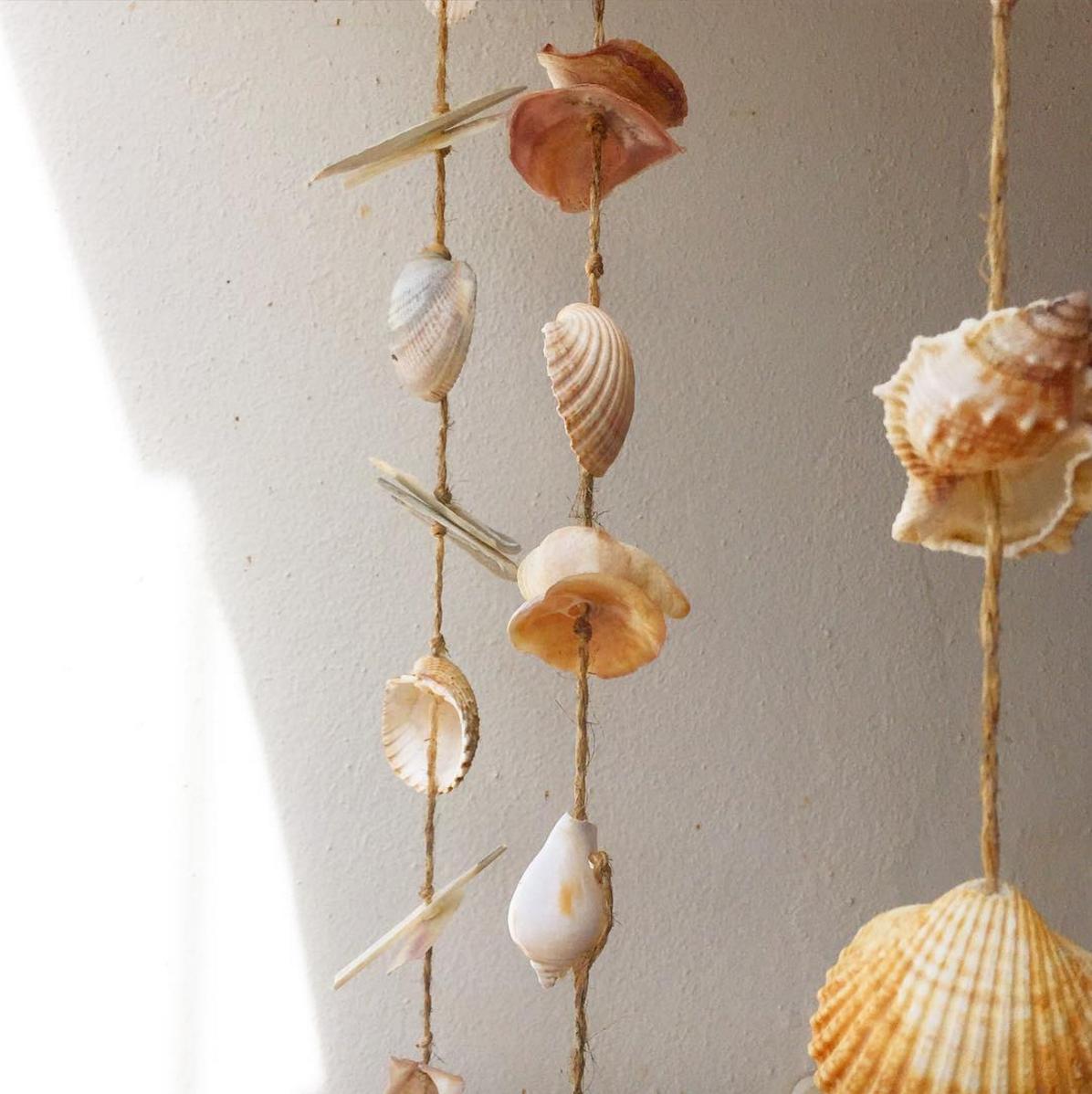 • sea sage sights: sea shells at a sea side town - burgau, portugal •